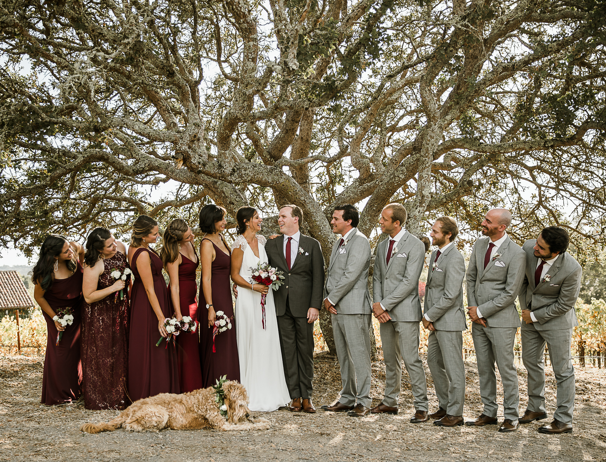 wedding party with labradoddle