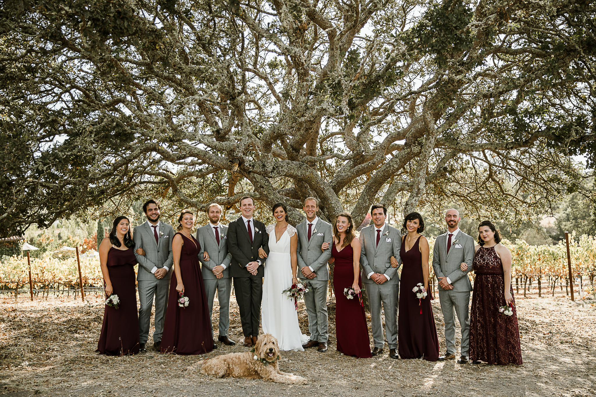 Napa Backyard wedding