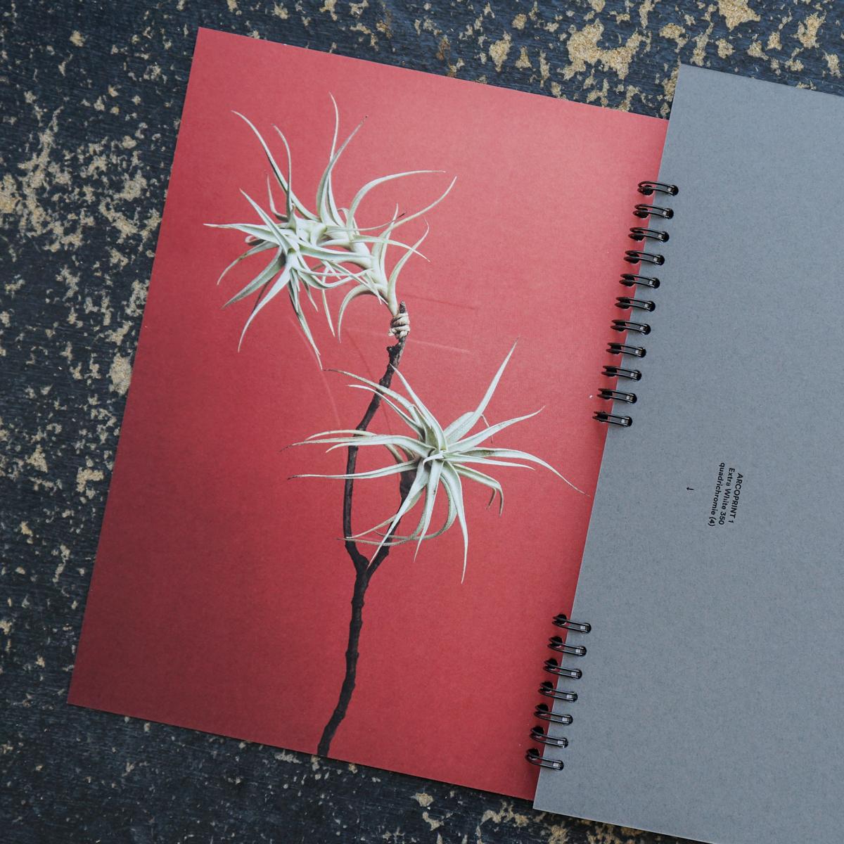 Polygravia_Brochure_HP_08.jpg