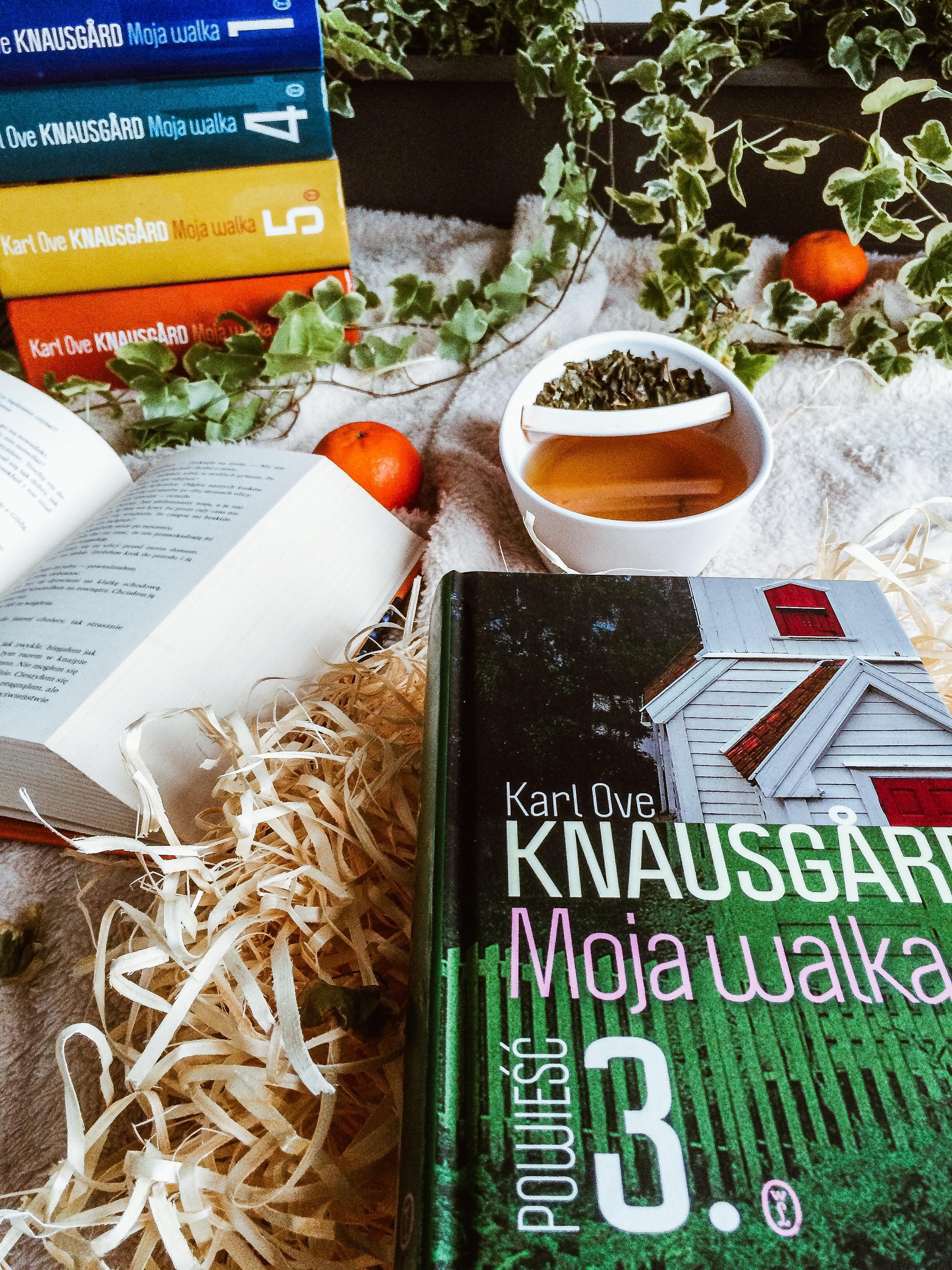 karl_ove_knausgard_moja_walka