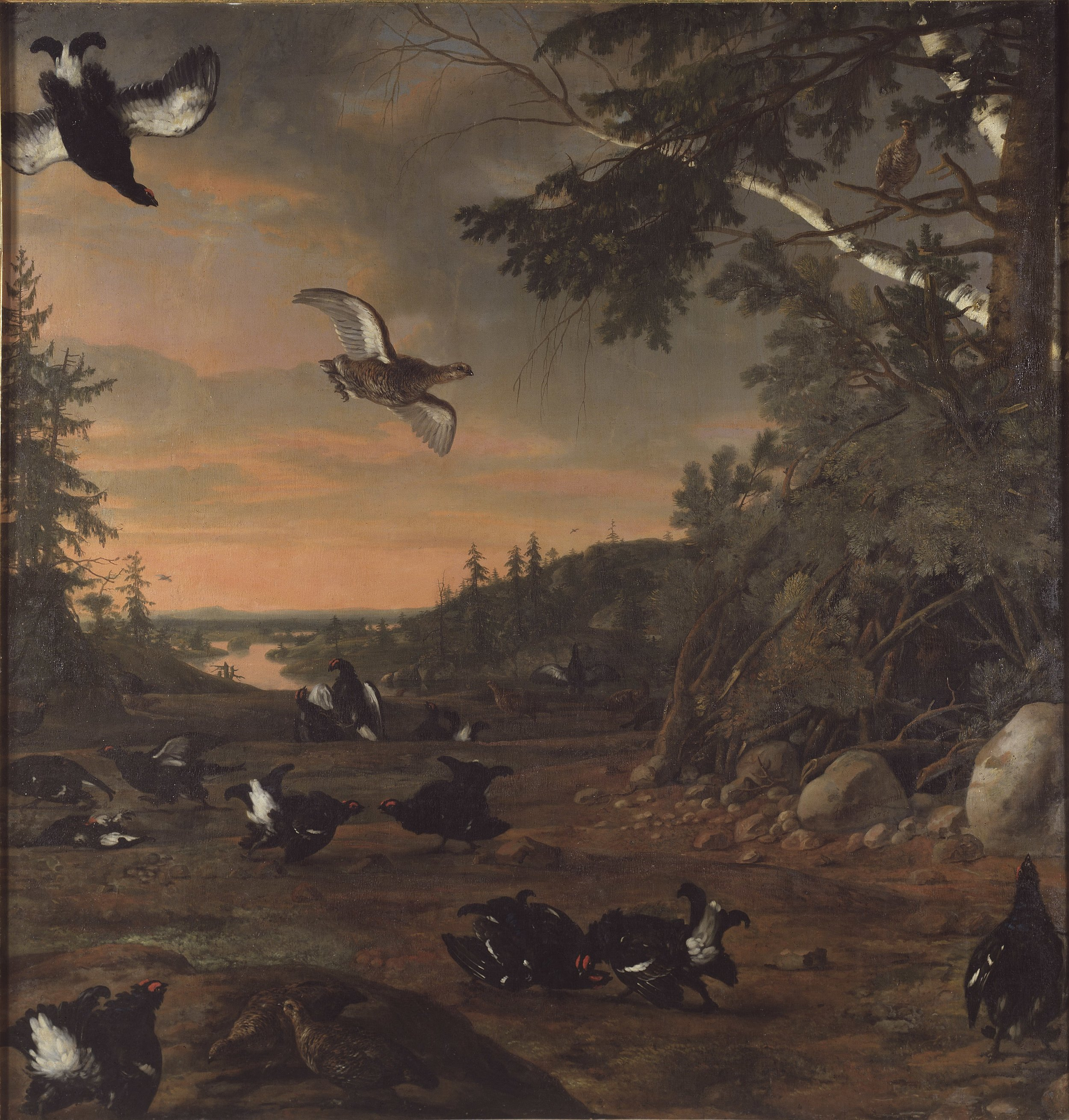 David Klöcker Ehrenstrahl, Black Cocks at Ground, 1675, Nationalmuseu, photograpgher Erik Cornelius.jpg