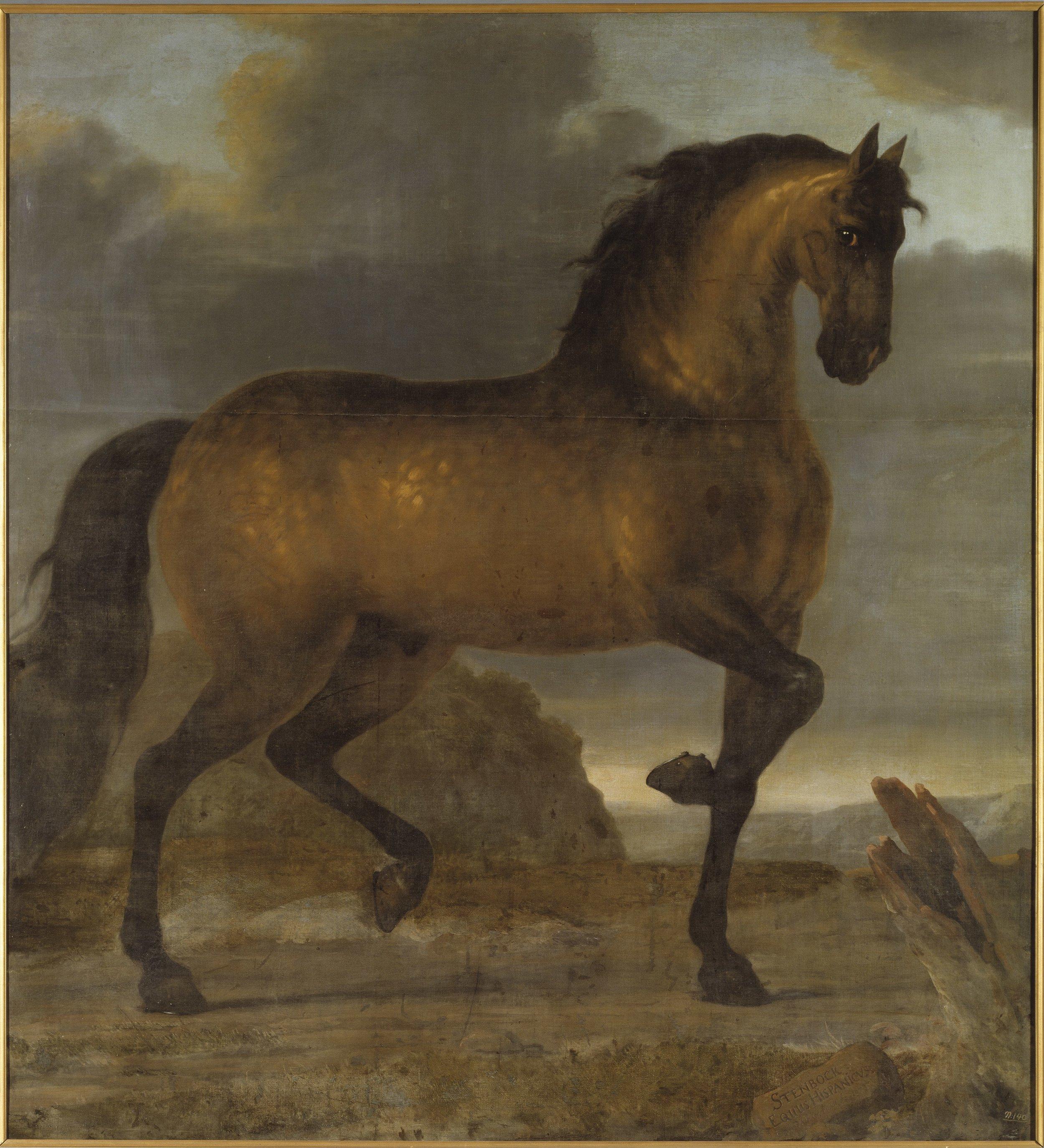 David Klöcker Ehrenstrahl,  Karl XIs livhäst Stenbock, 1673, Nationalmuseum