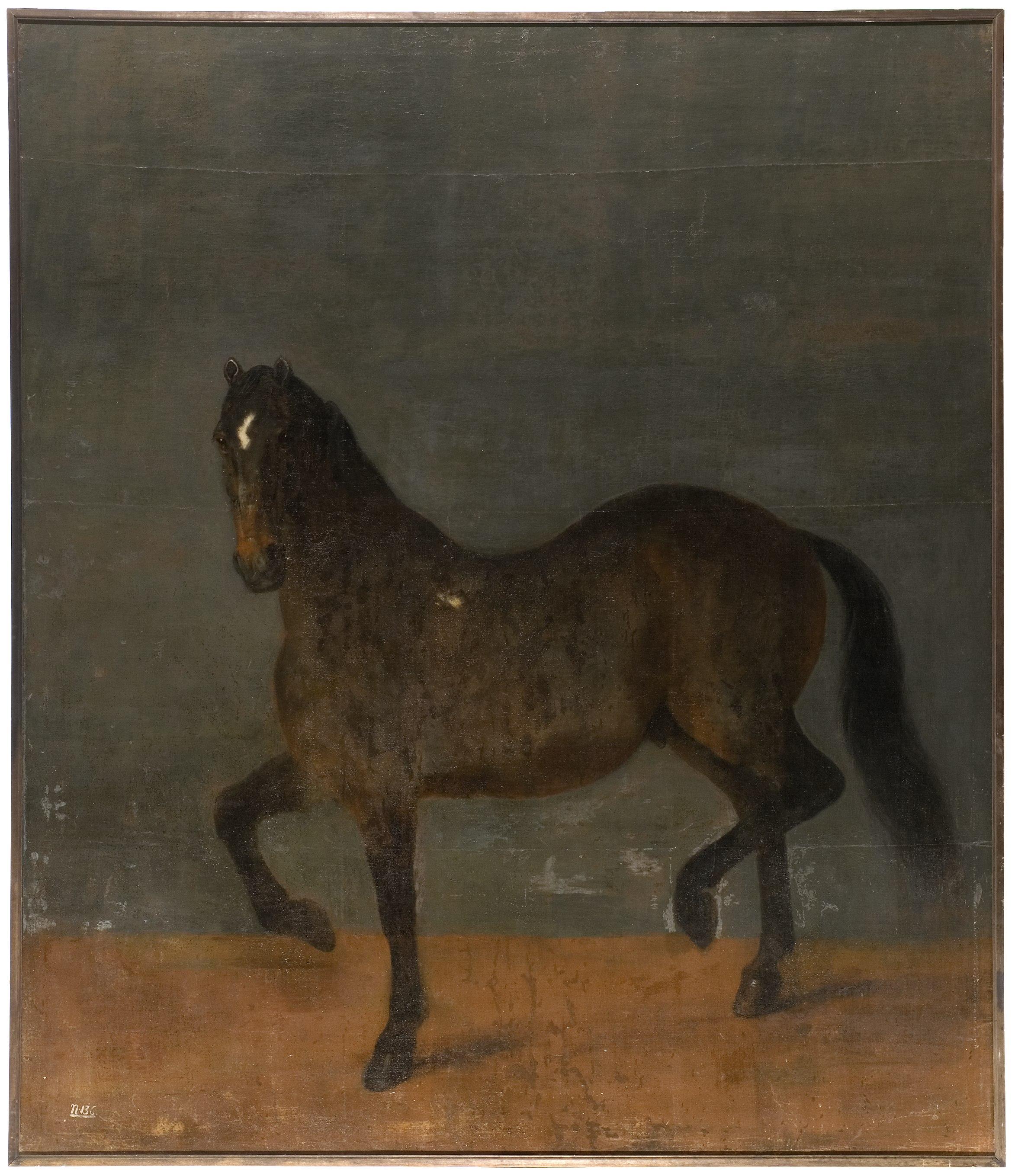 David Klöcker Ehrenstrahl, Häst kallad Brandklipparen, Nationalmuseum