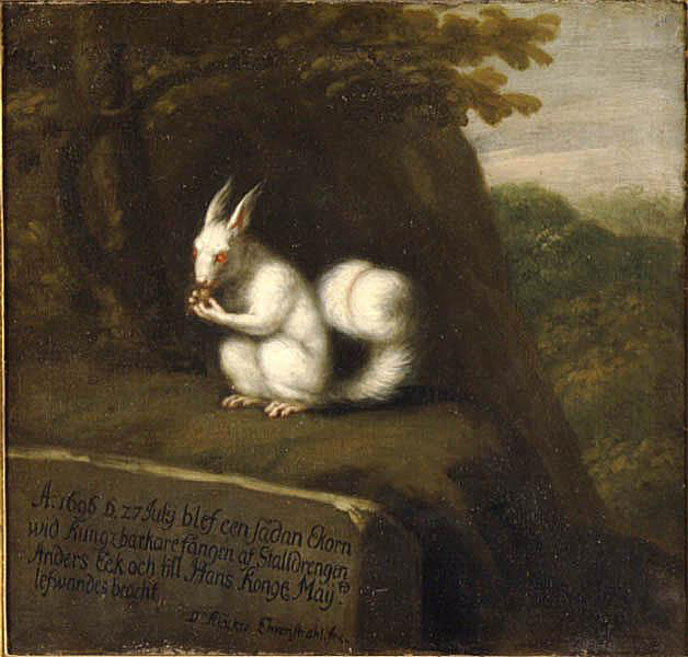 David Klöcker Ehrenstrahl, White Squirrel in a Landscape, 1696, Nationalmuseum, photographer Erik Cornelius.jpg