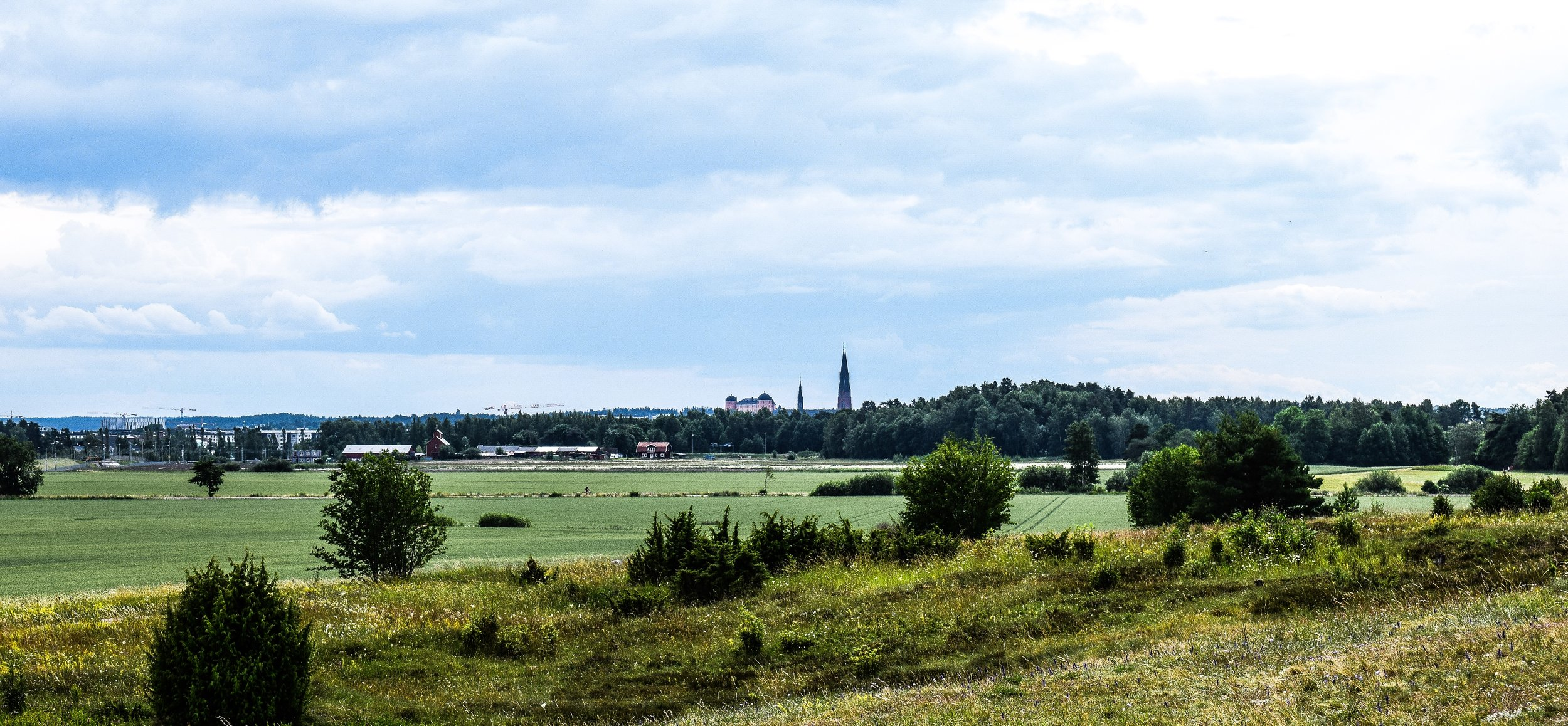 View from Gamla Uppsala - castle and the cathedral visible in the distance