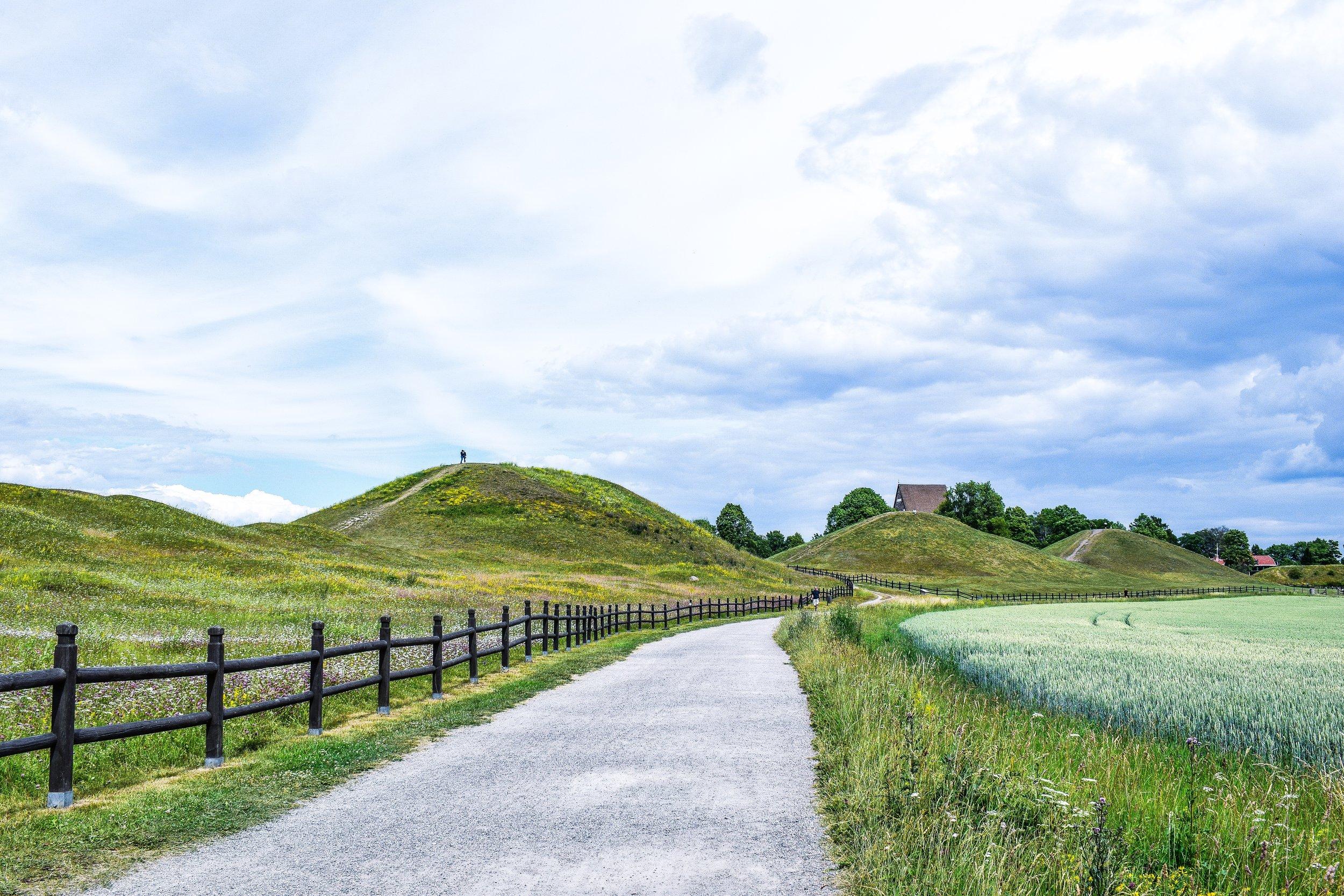 gamla_uppsala_kings_mounds2.jpeg