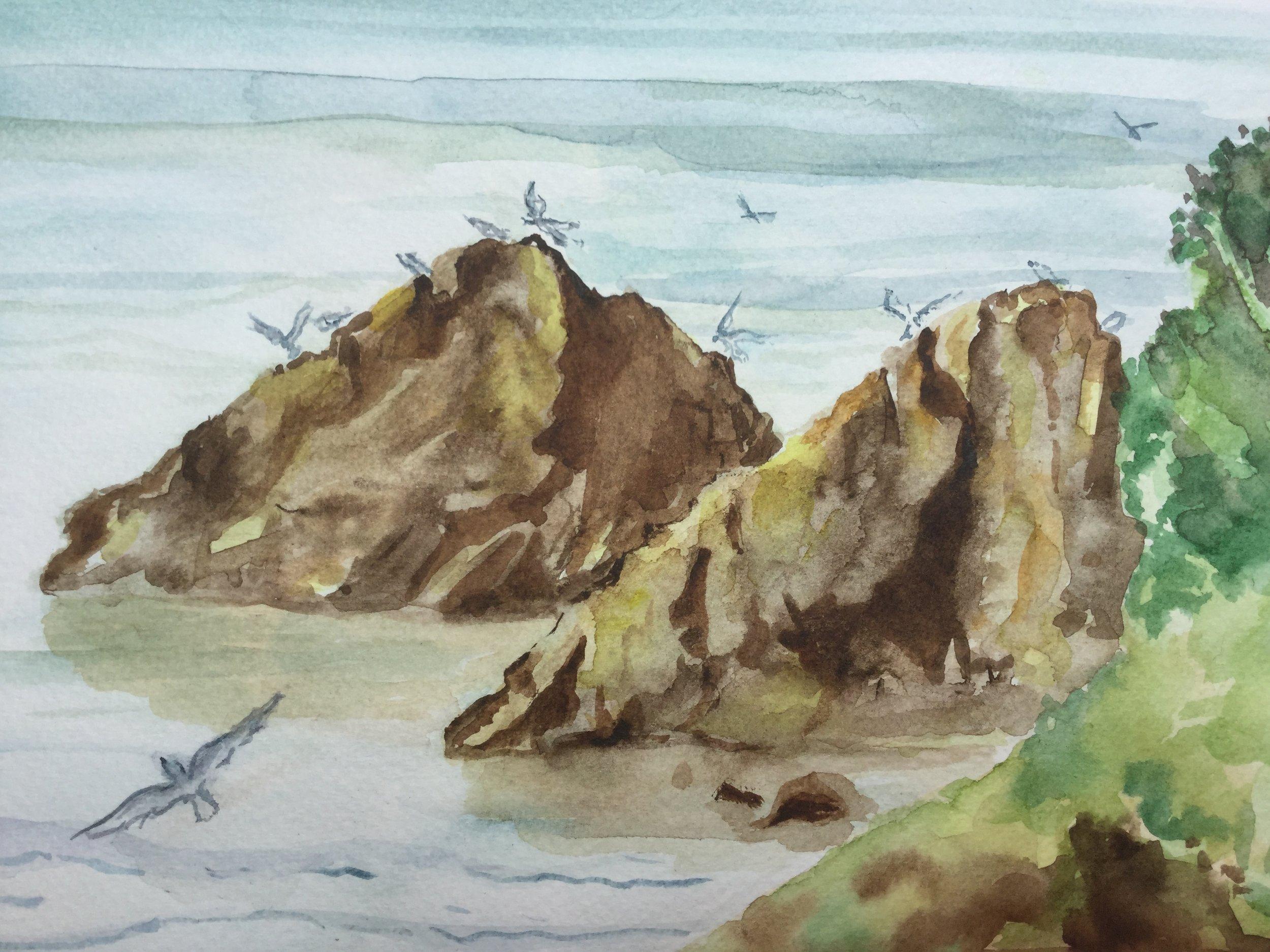 Caswell Bay Rocks