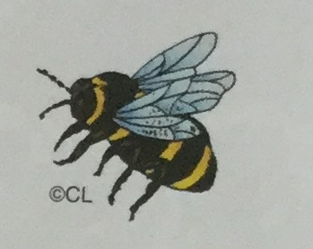 Bumble Bee Two