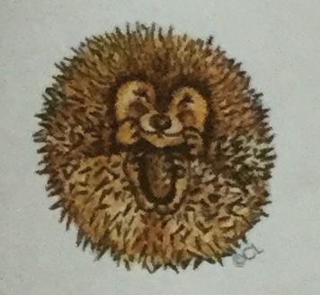 Hibernating Hedgehog