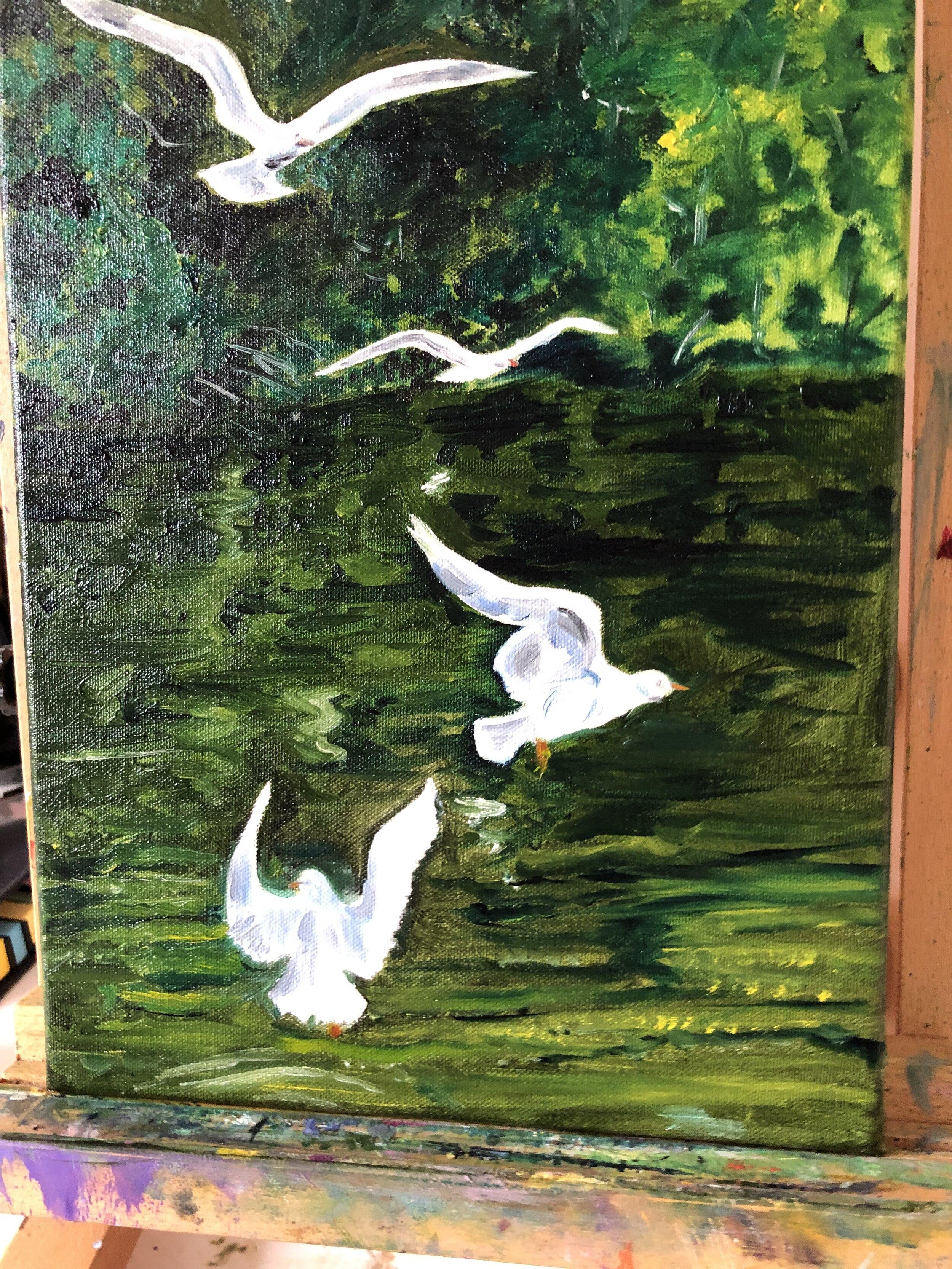 Seagulls on Kennet & Avon Canal