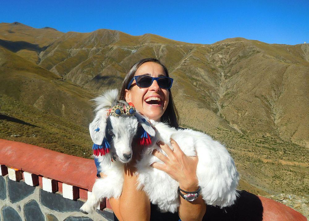 goat-joy.jpg