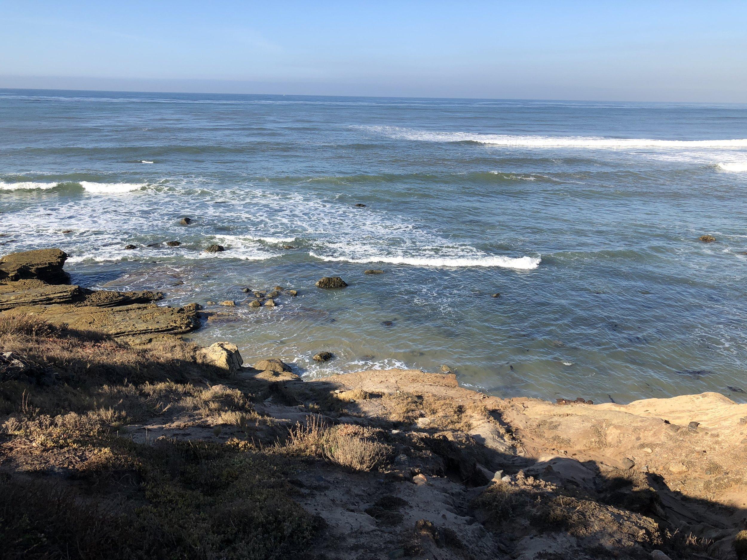 Point Loma tidepools