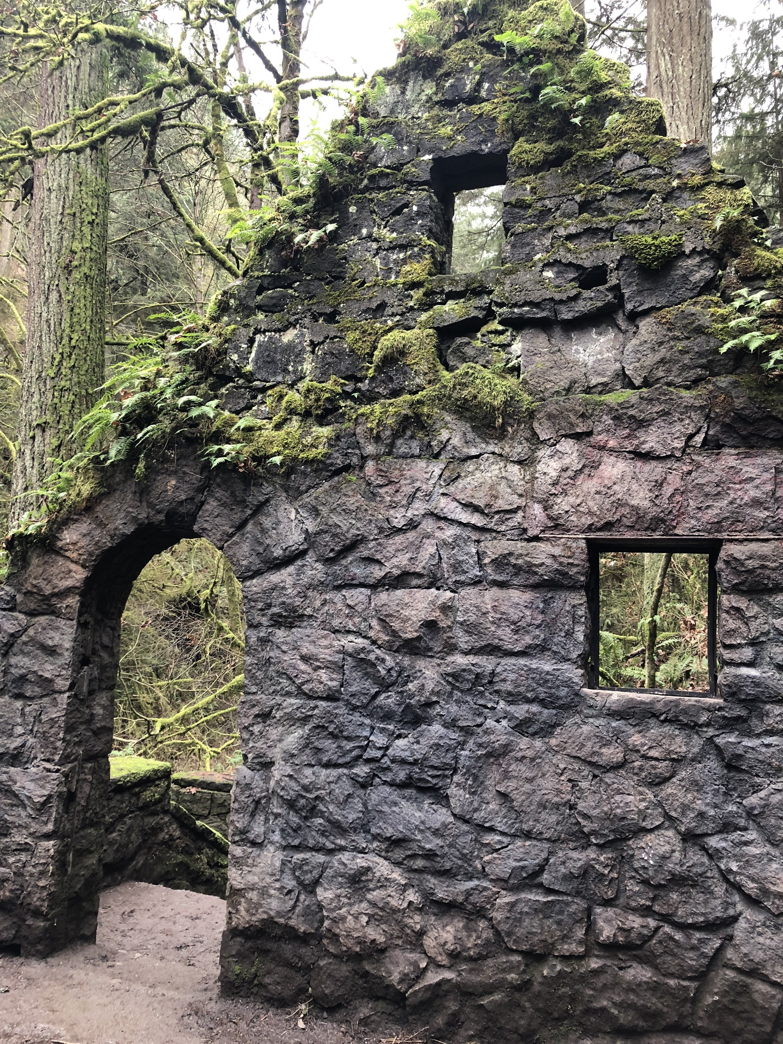 Witch's Castle, Forest Park, Portland. If I lived here, I would run in this park forever.