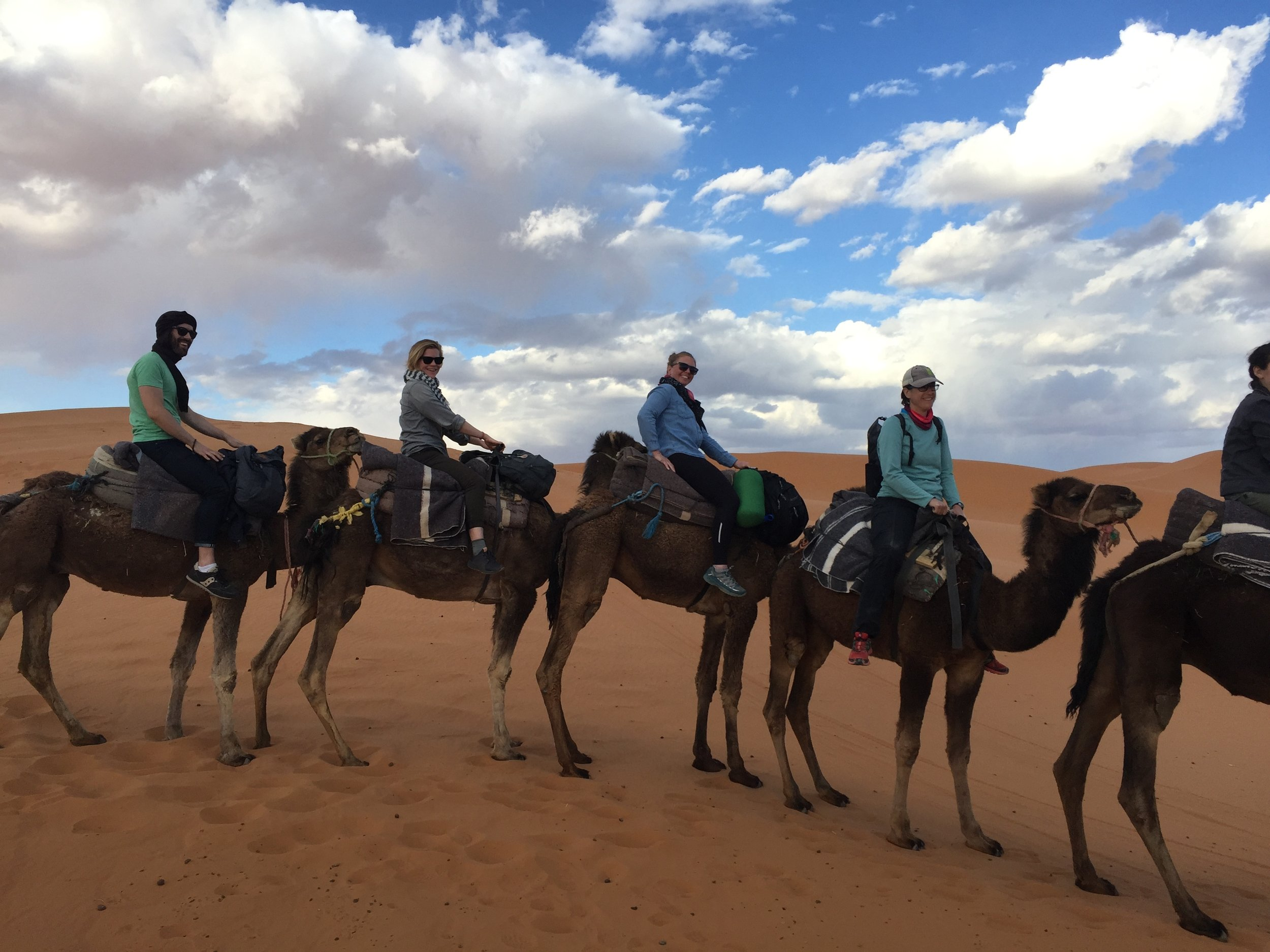 Americans! On camels!