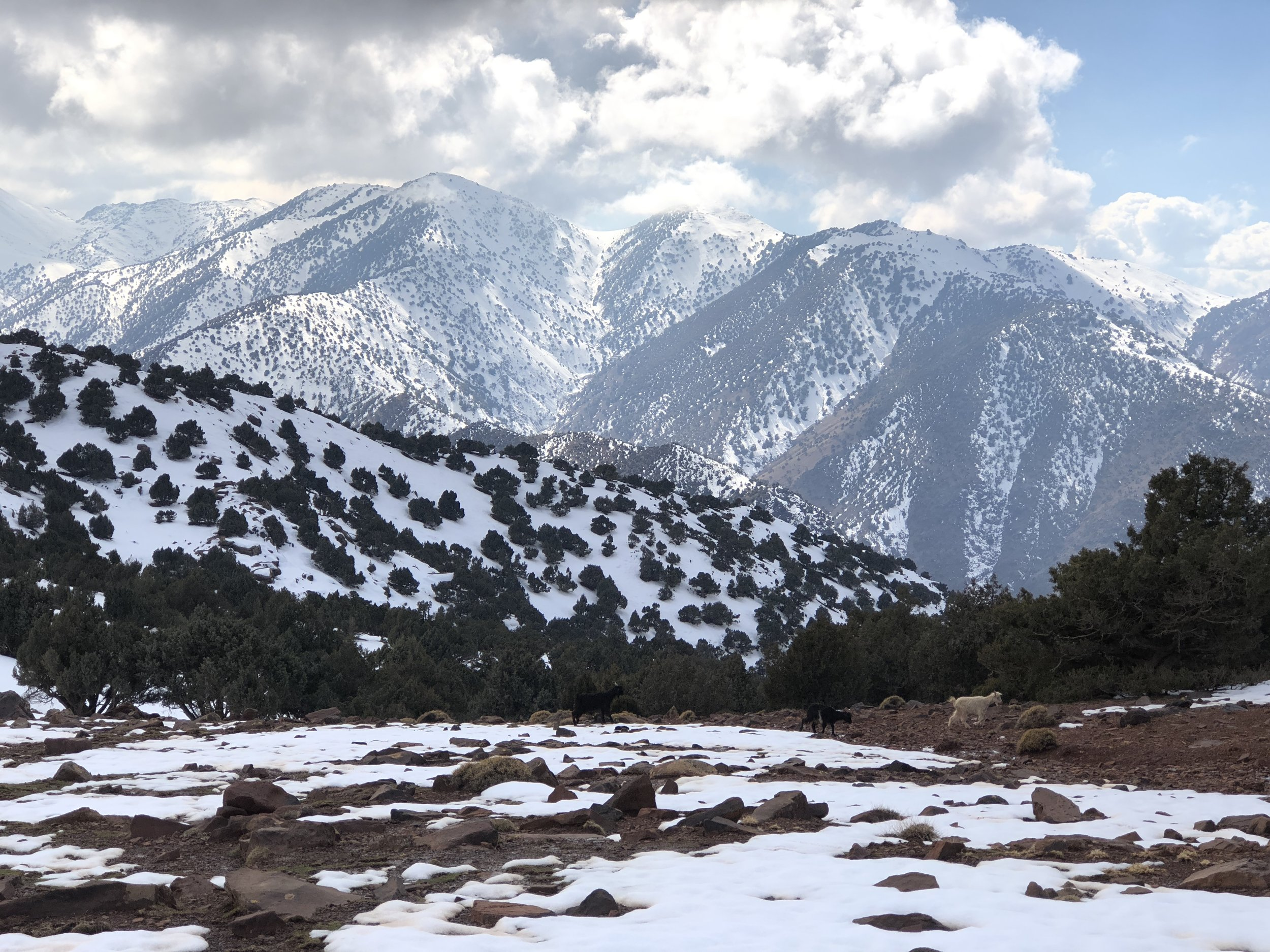 View from the Tizi Oudite pass