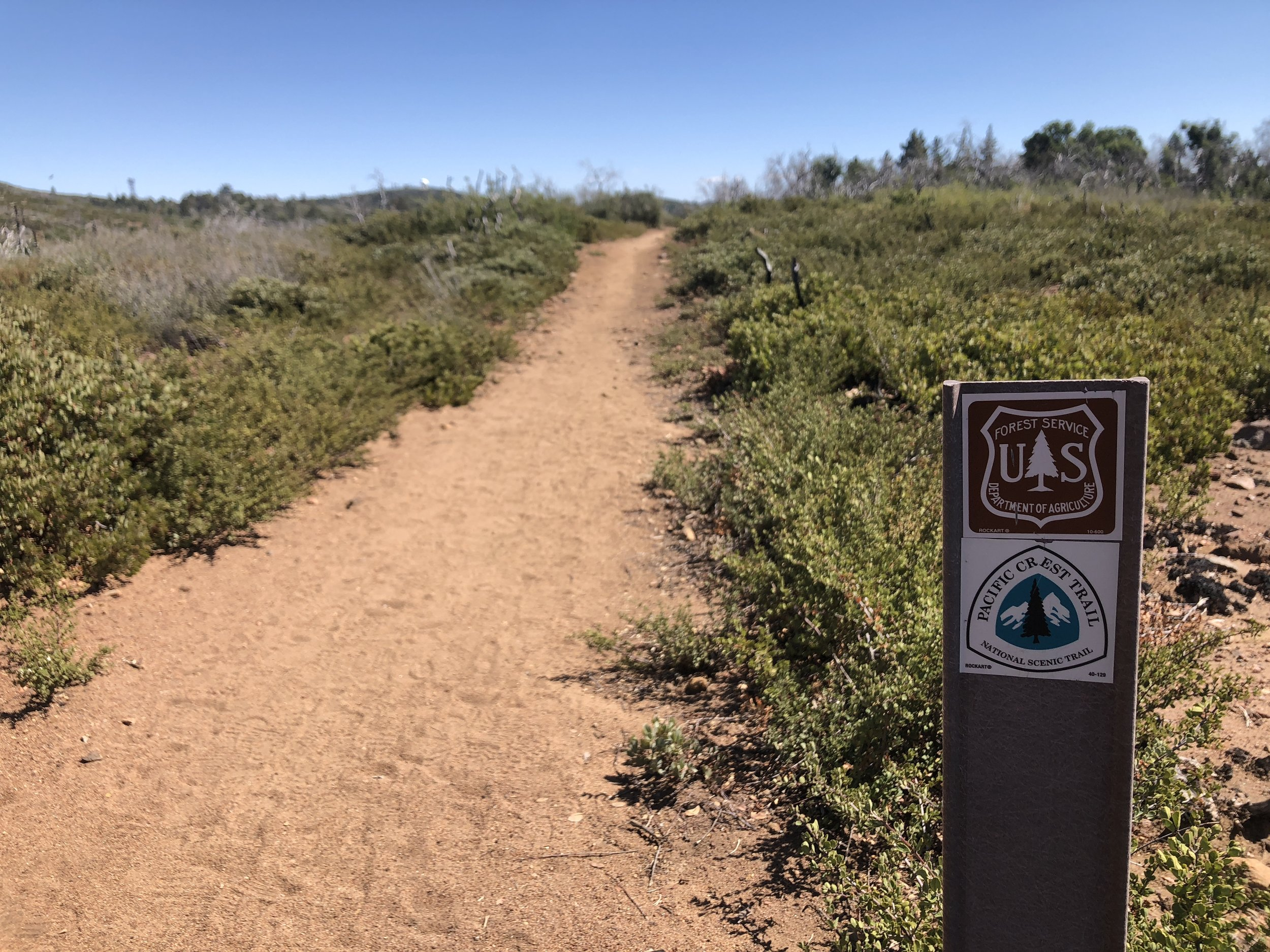 The Laguna Mountains,east of San Diego in Cleveland National Forest, are home to a stretch of the Pacific Crest Trail.