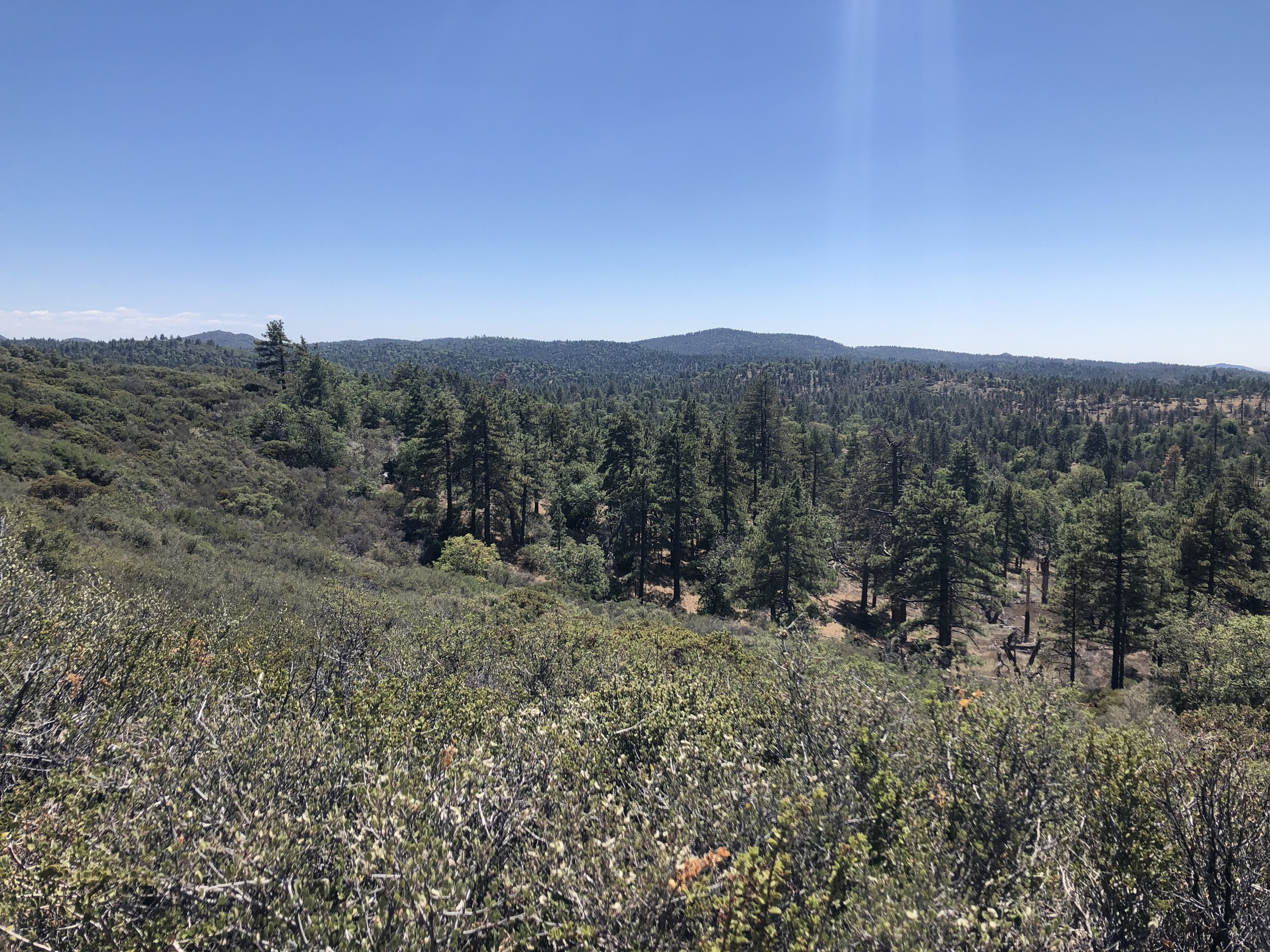 Looking southwest from the PCT.