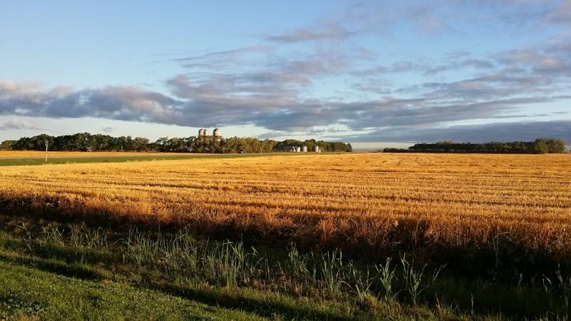 A beautiful Manitoba morning.