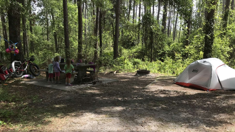 Our campground at Osceloa National Forest.