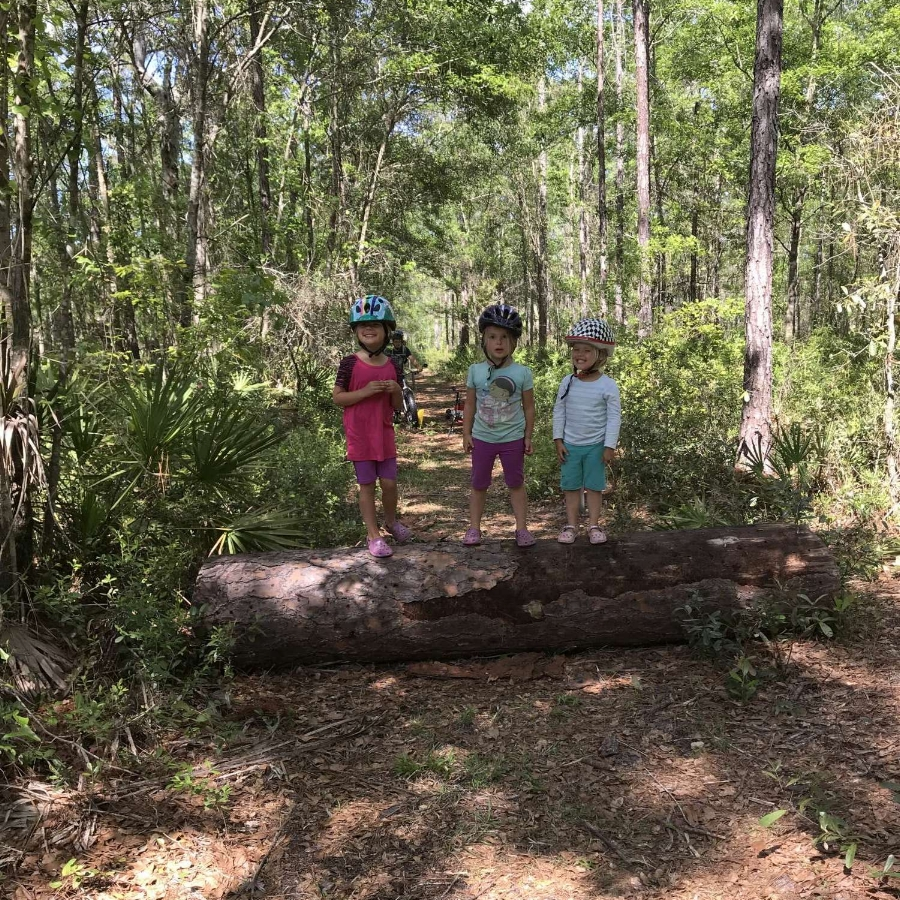 Gathering wood for a fire with our bike and BOB trailer.