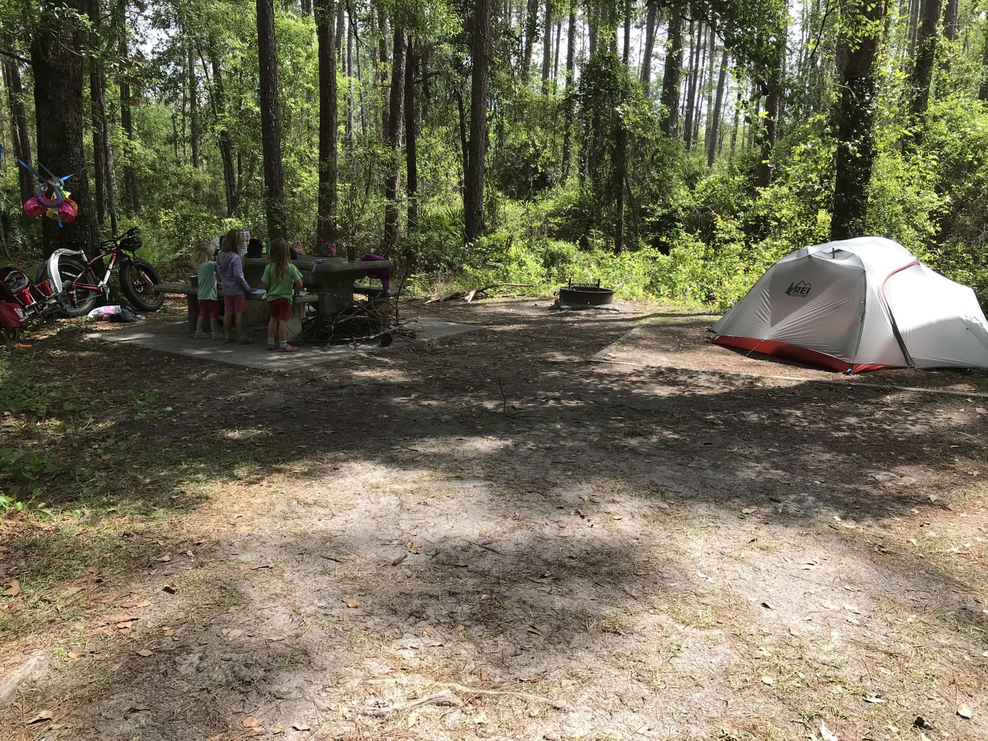 We lived through several big thunderstorms camping during our week at Osceola!