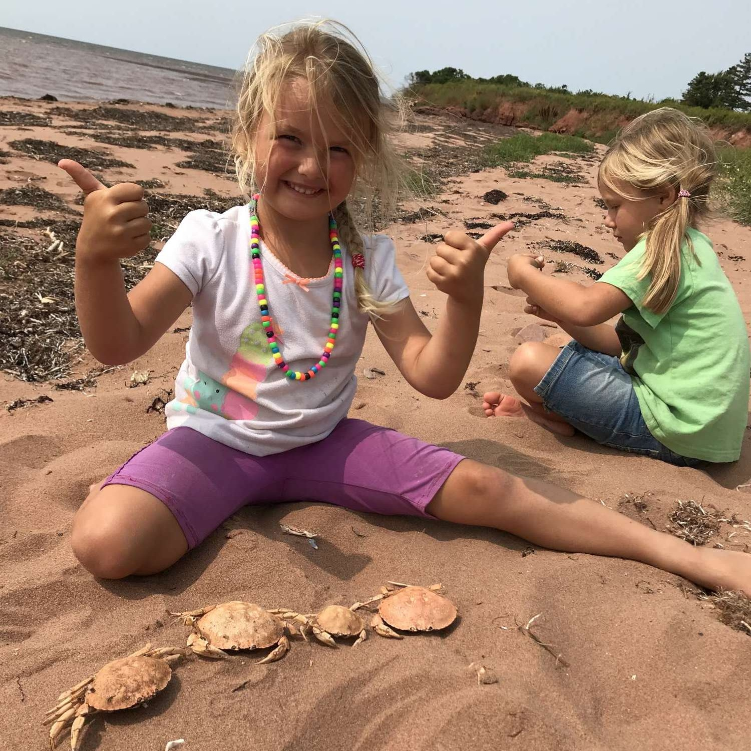 The girls are great at collecting things, using their imaginations, and playing with things they find around them. They love to be out discovering for themselves all the wonders of God's creation!