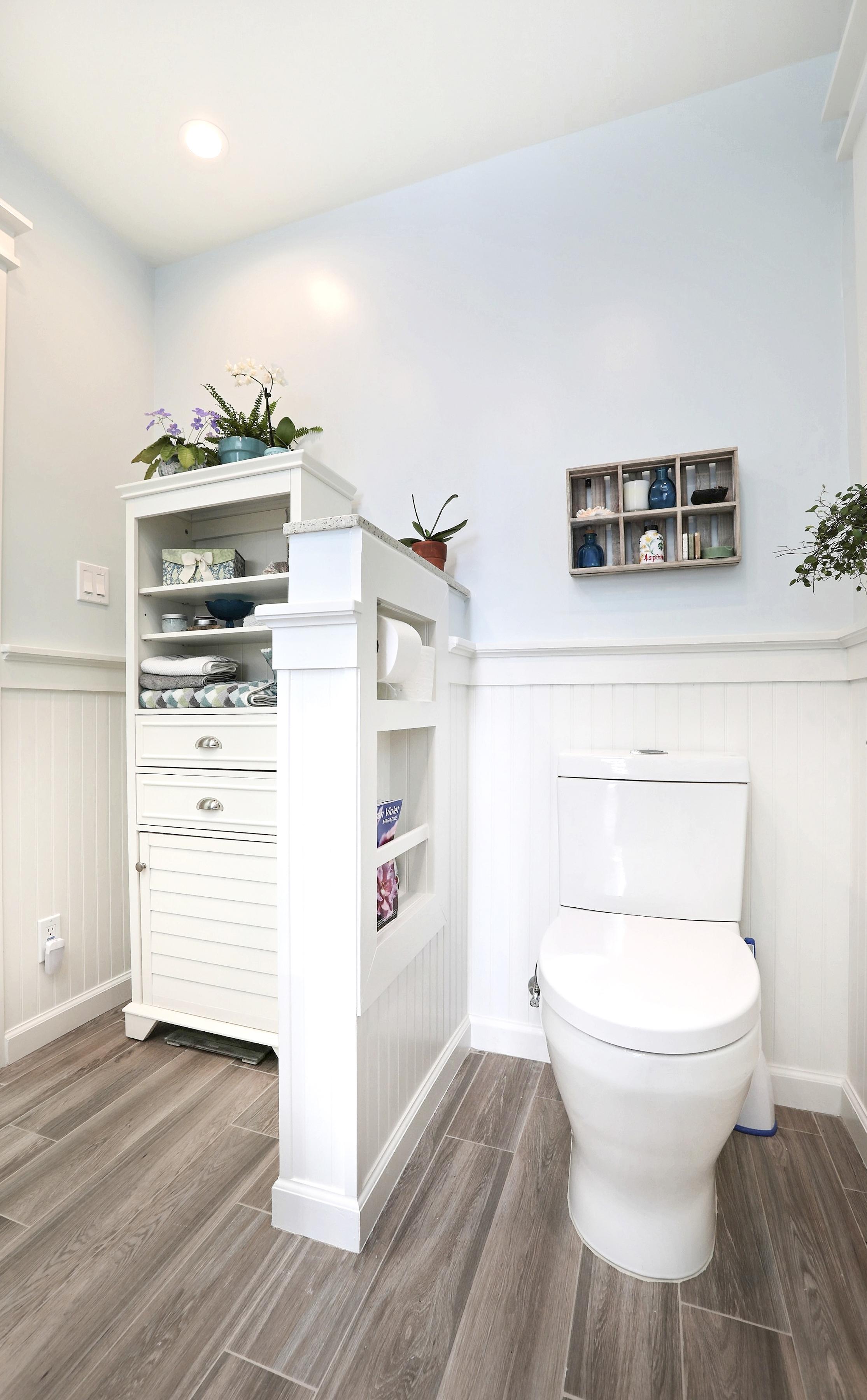 Toilet Niche