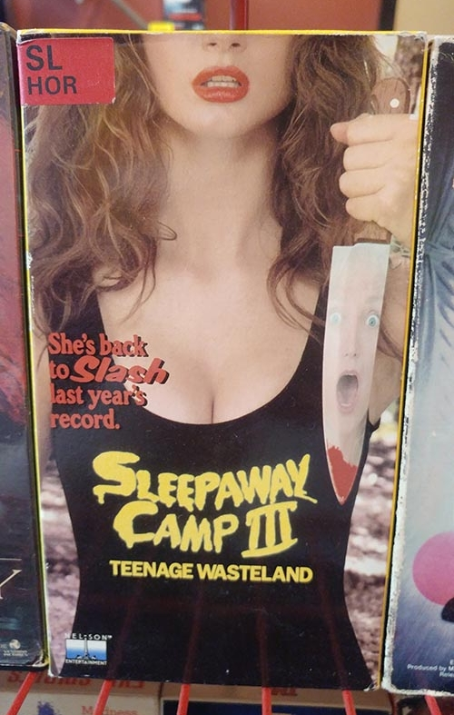 The horror trifecta of sex, youth, and violence is apparent in the artwork of this VHS tape. (  MC  )