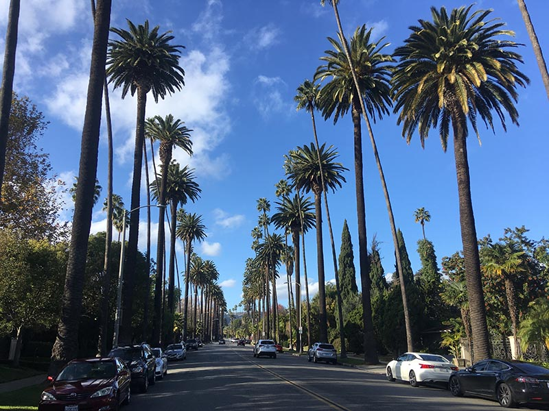 Surprisingly not much of the  Real Housewives of Beverly Hills  is actually shot within city limits. (  Papagan  )