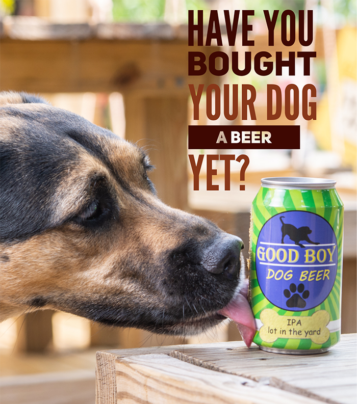 beer_for_dogs
