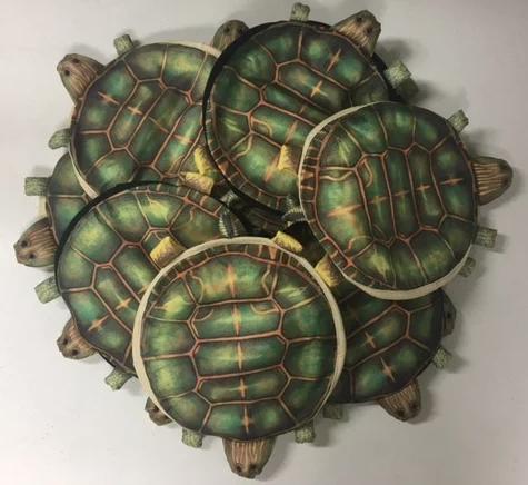 original_turtle_hats