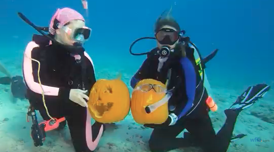 Divers showing their underwater creations at a recent event in Florida.  (Screengrab)
