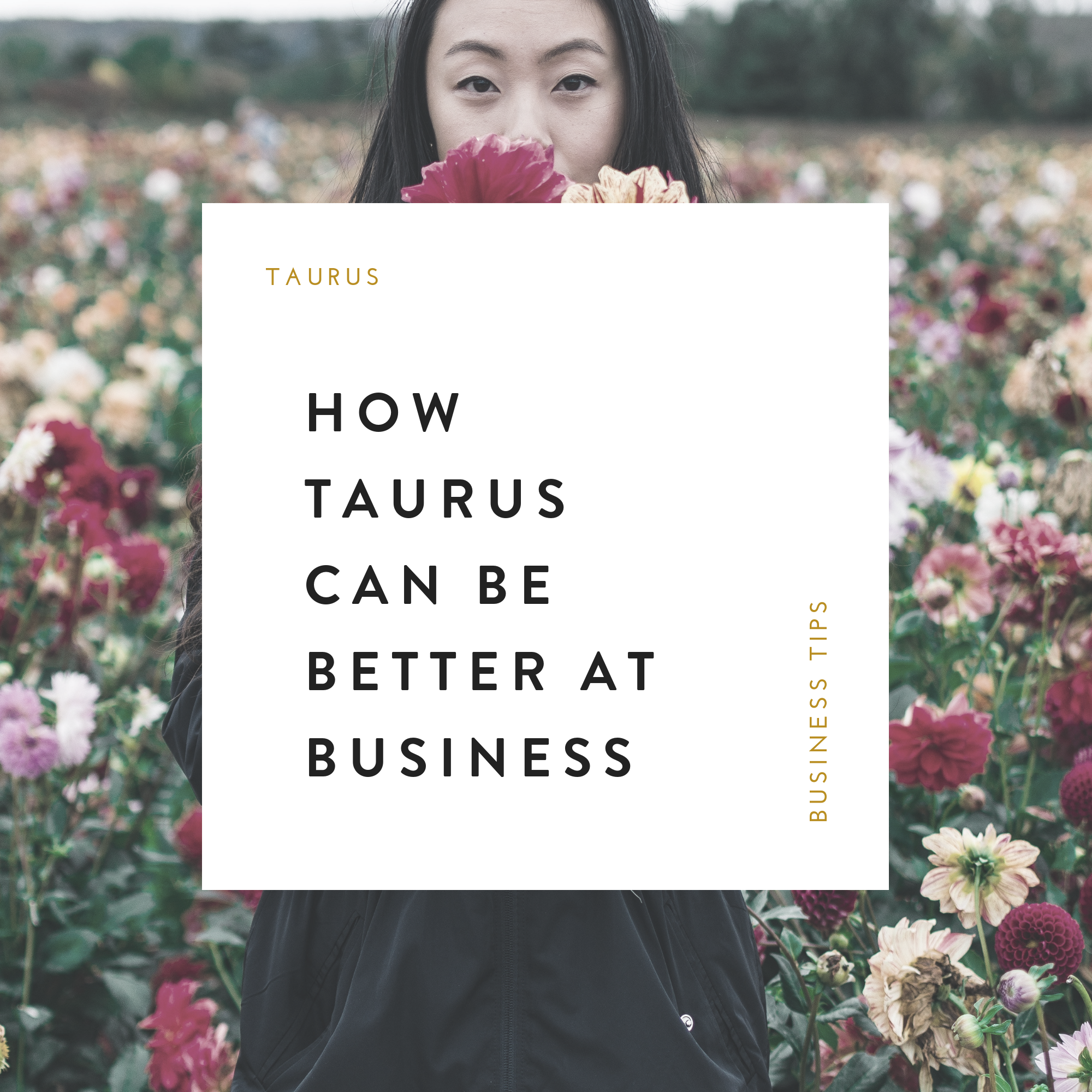 How Taurus Can Be Better Business Owners.png