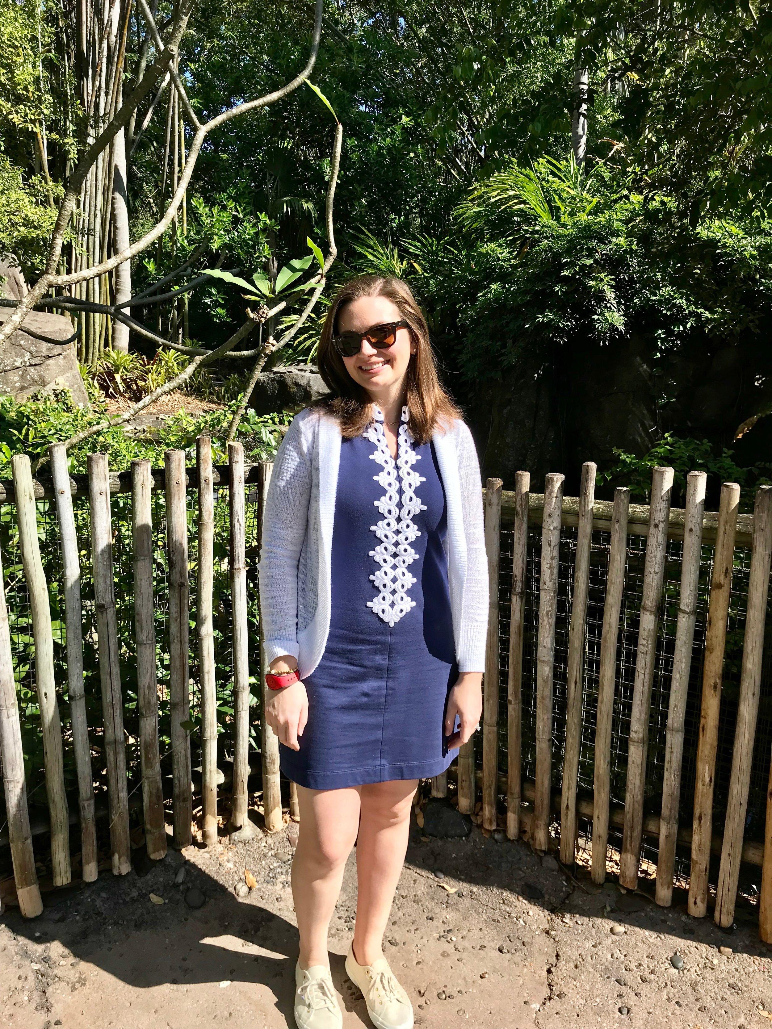 Lilly Pulitzer Callista Dress
