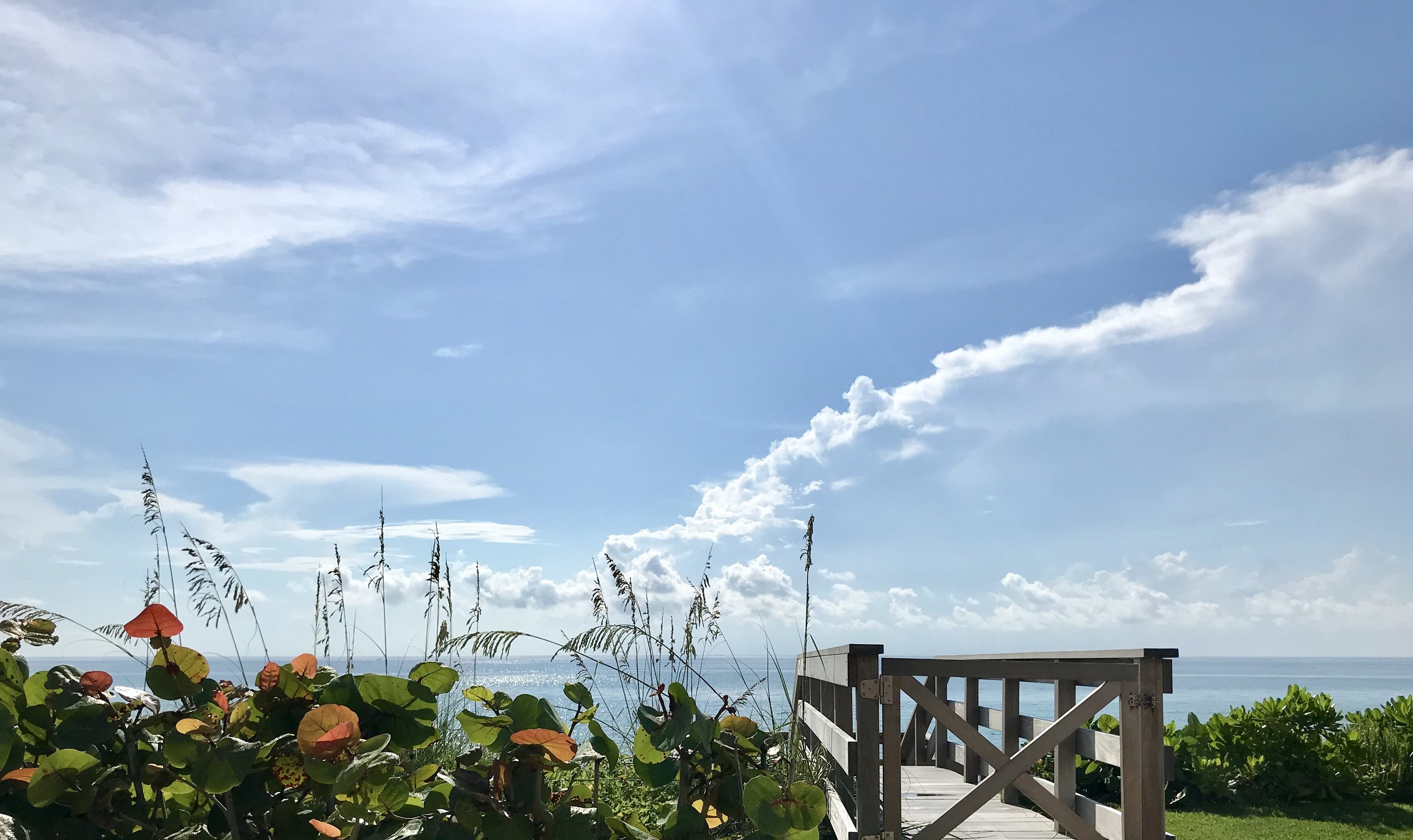 Palm Beach Beach Scene