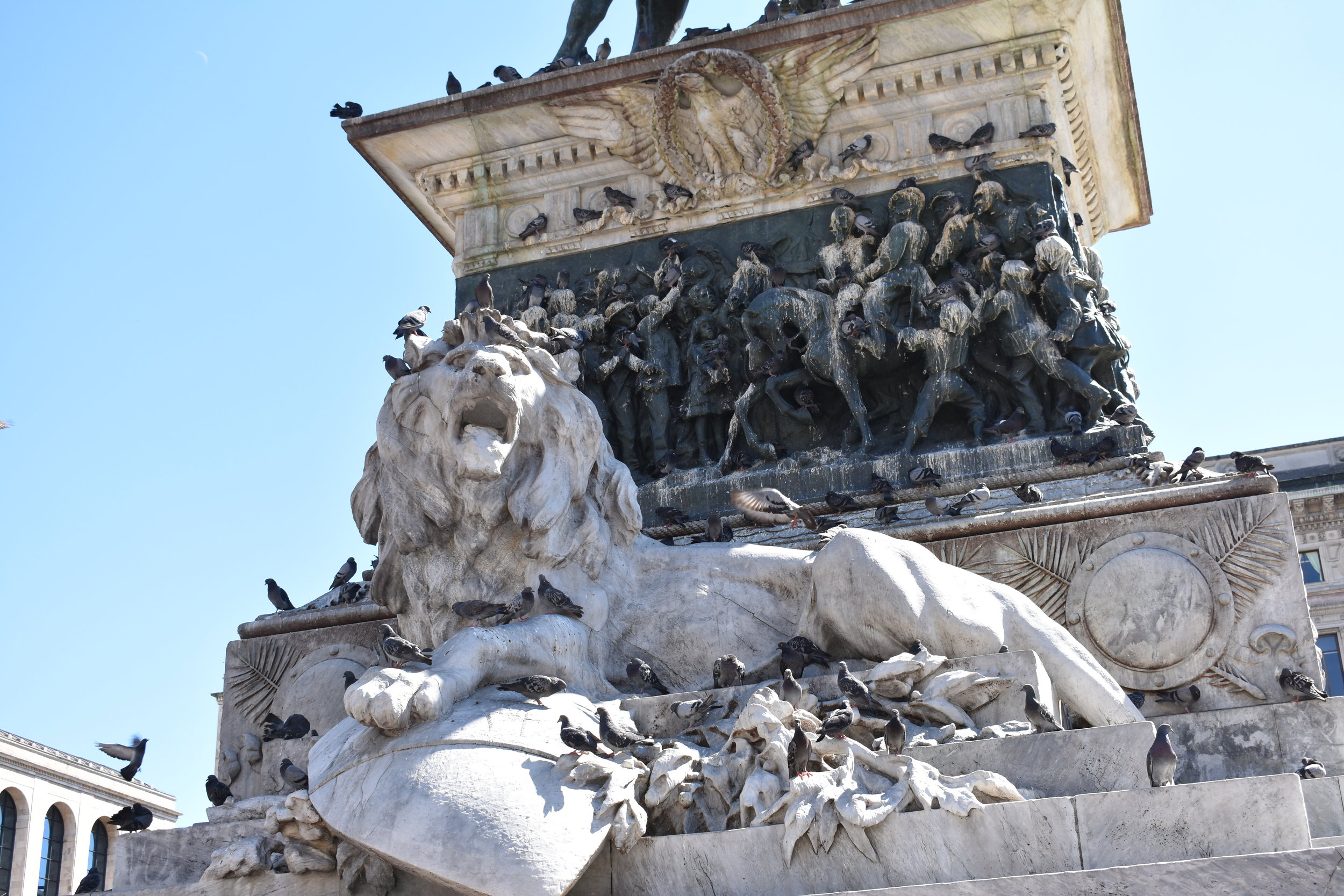 Doesn't the lion looks furious about all of the pigeons?