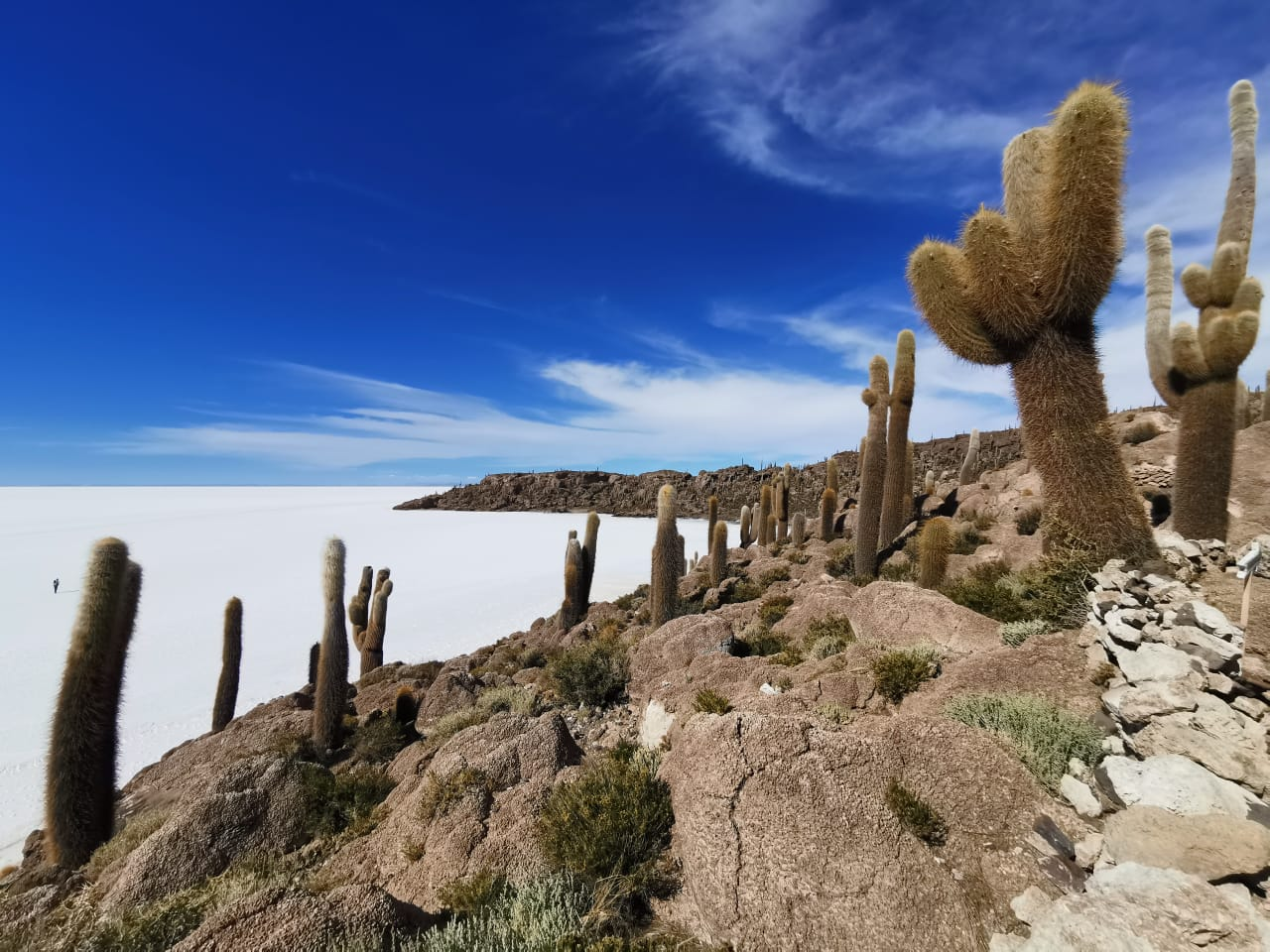 Bolivia-UYUNI SALT FLATS -