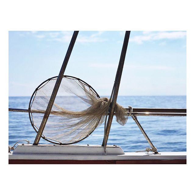 Plein soleil in Naxos, Sicily . . . . #wanderlust #neverstopexploring #mytinyatlas #lostinsicily #wanderingabout #makingmemories #lovedoinglifewiththem #memoiresofasummer