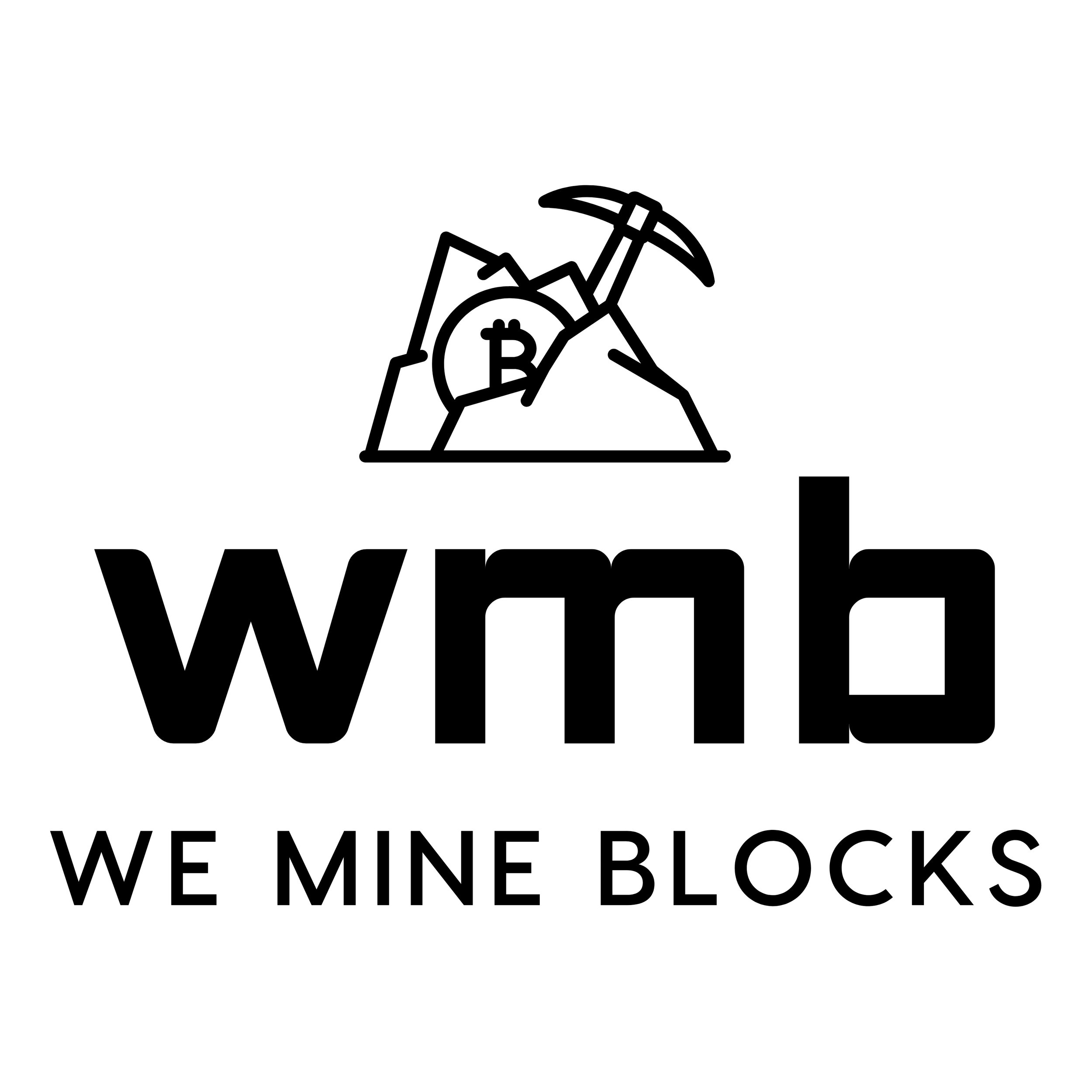 We Mine Blocks