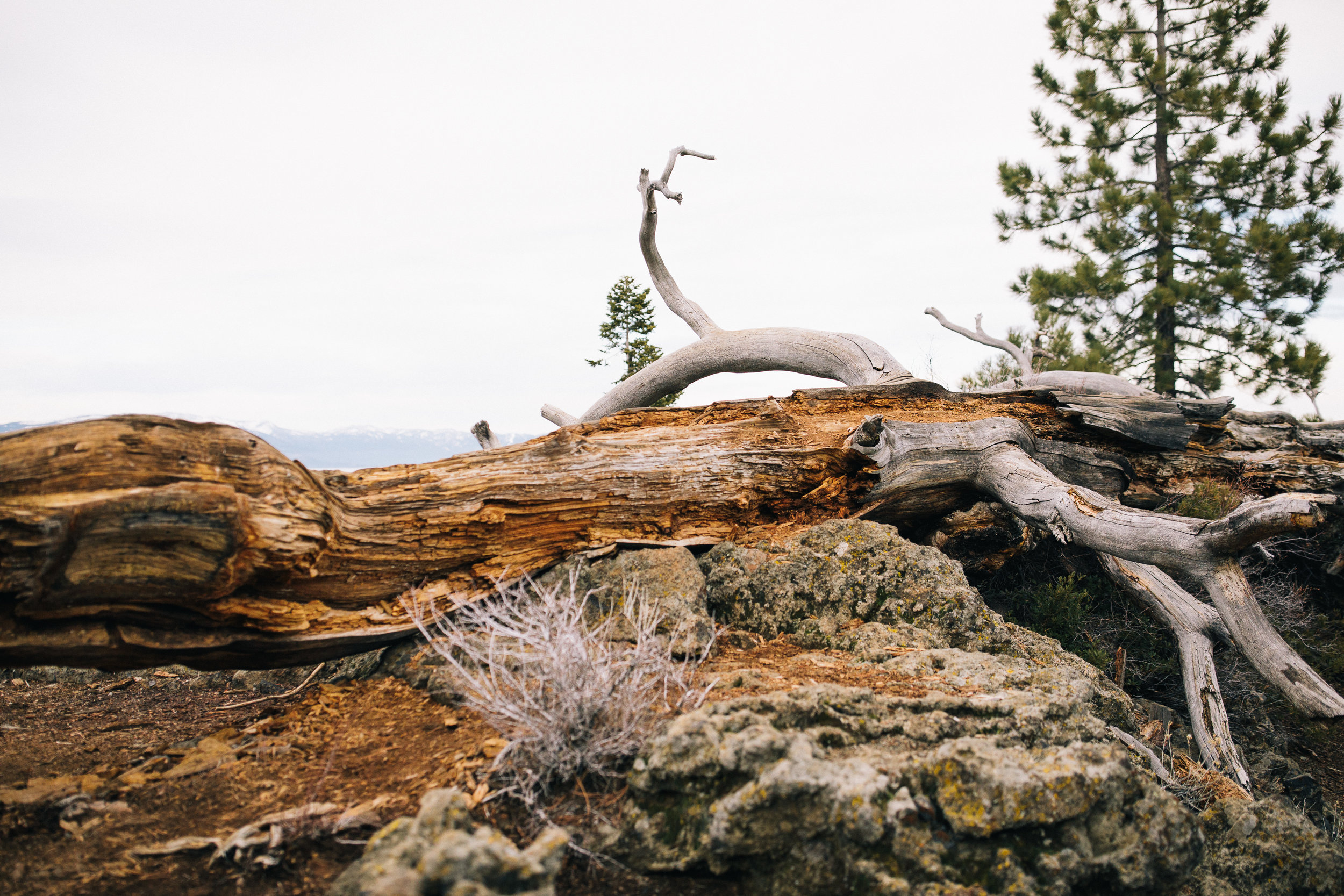 2018_01_01 Tahoe Trip 2018 Edited Full Resolution 0049.jpg