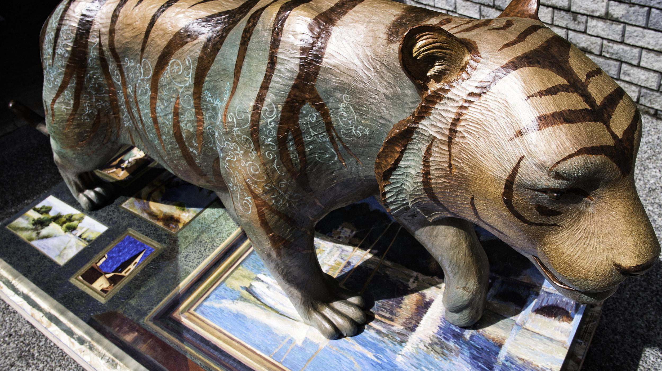 150414_ValerieCollymore_Tiger5.jpg