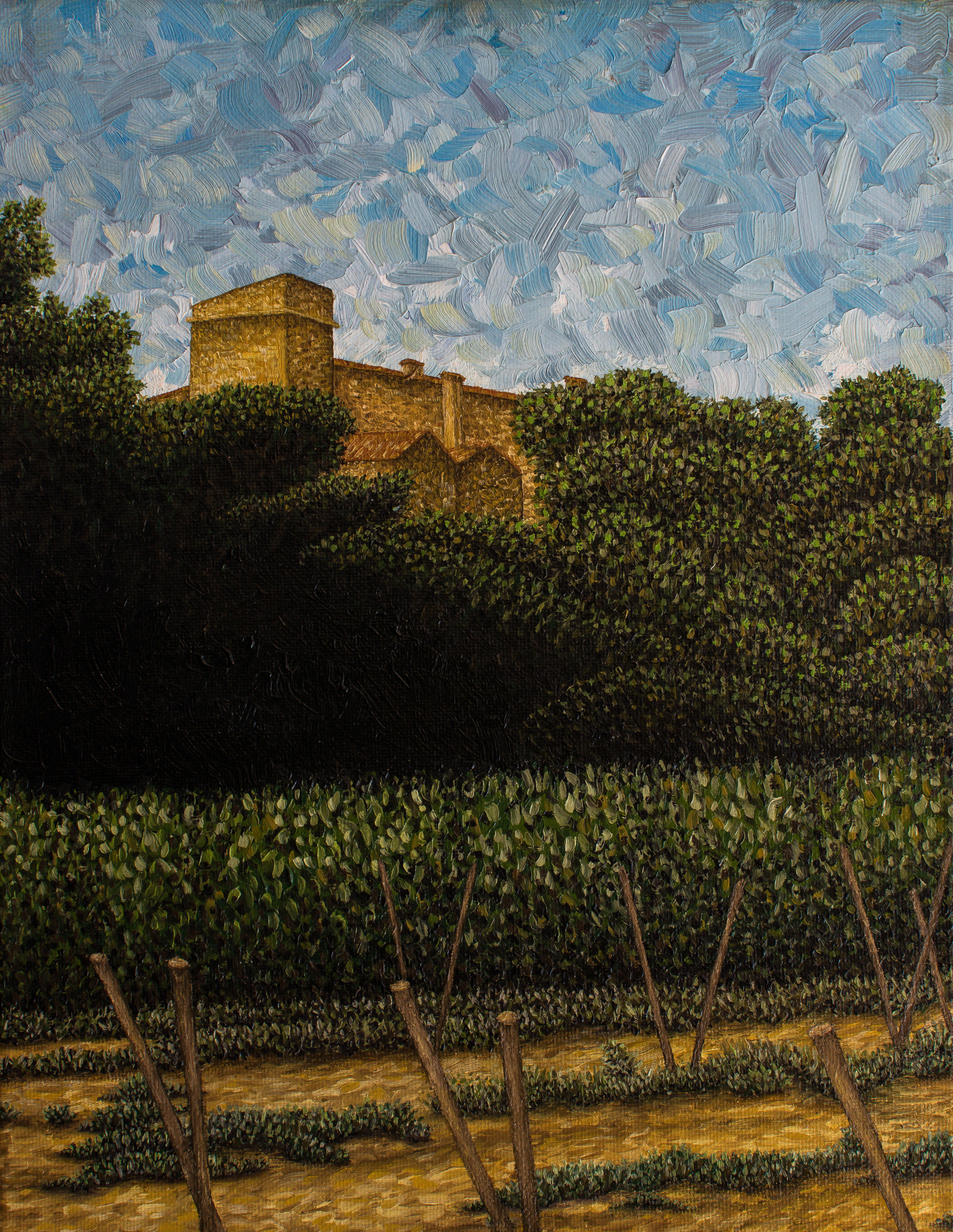 Vineyards à Ménerbes