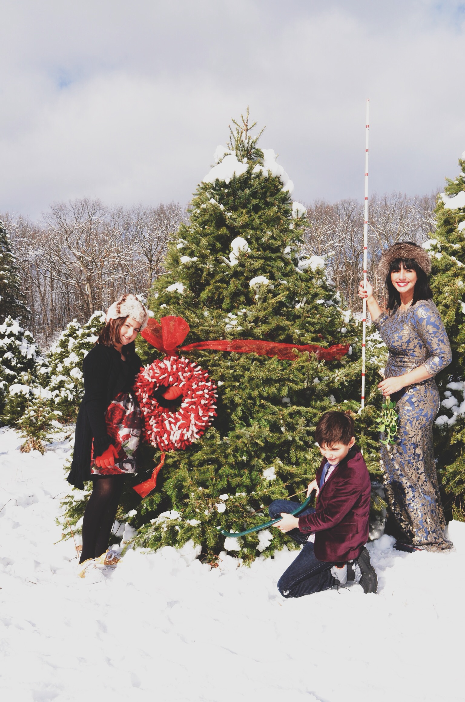 The Christmas Tree Harvest A Perfect Opportunity For A Holiday Card Photo Shoot Bacon Lox Society