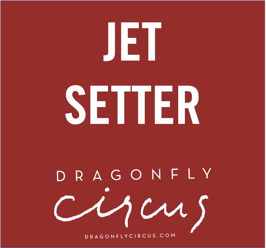 Dragonfly Circus - Jet Setter Inspiration