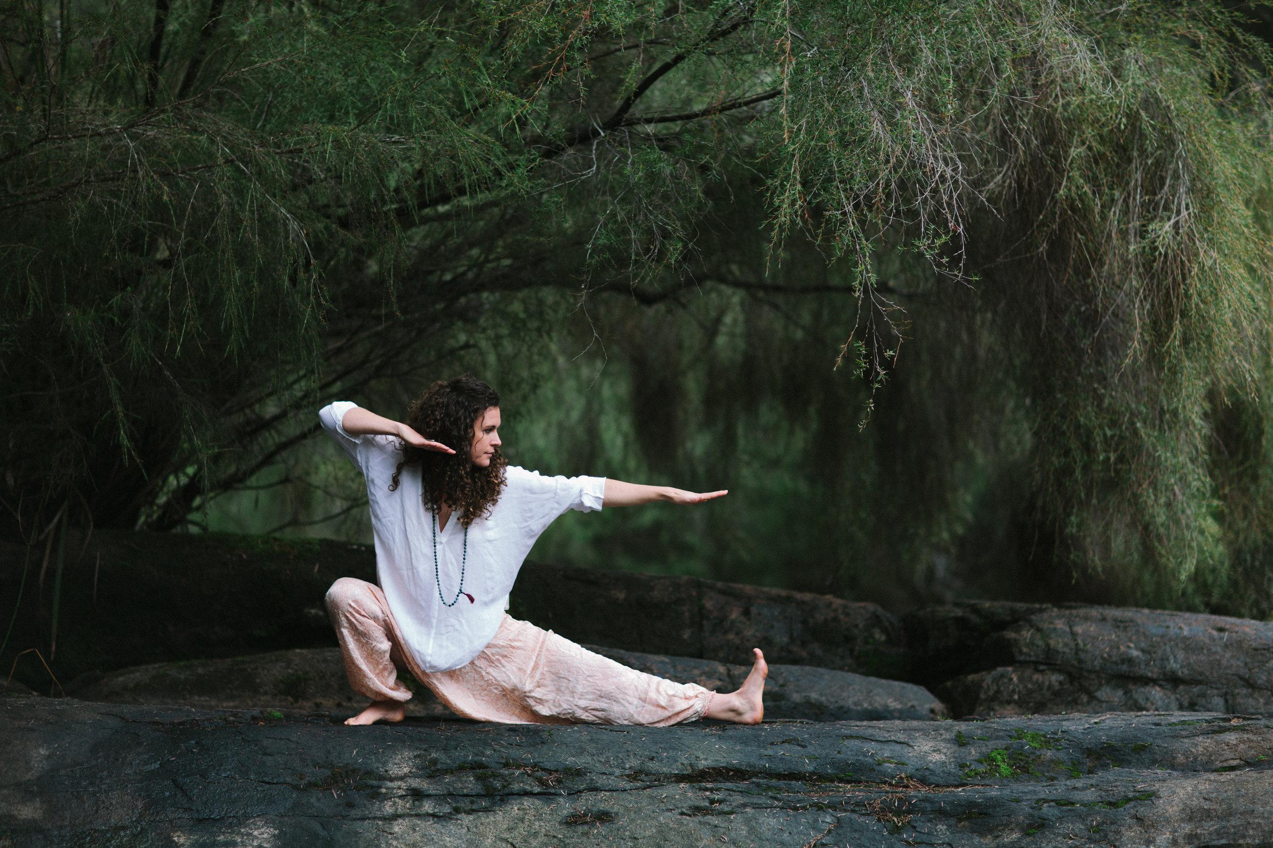 yogi-12.jpg