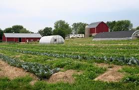 family farm.jpg