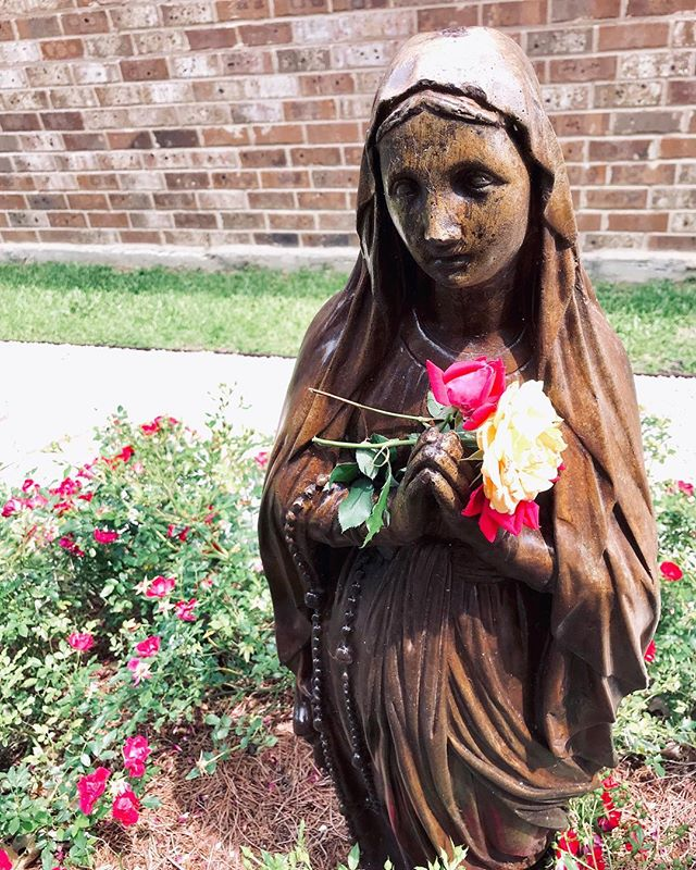 Today we had only three fading roses to bring to the little Mary statue at the church near our house. We almost didn't go. Why buckle both kids in the car just for a couple of minutes in the muggy heat, to say one Hail Mary and deliver a few broken flowers? And it's true that once we got there, Patrick ultimately spent more time playing with the rocks in the garden than he did in contemplative prayer (God bless toddlers). But when I saw him run to the little statue holding the three roses, petals shedding behind him, I was struck with love. Some days I bring gardens of thankfulness and praise to God. Other days, I feel like I have nothing. I know that's okay. He wants our weeds.