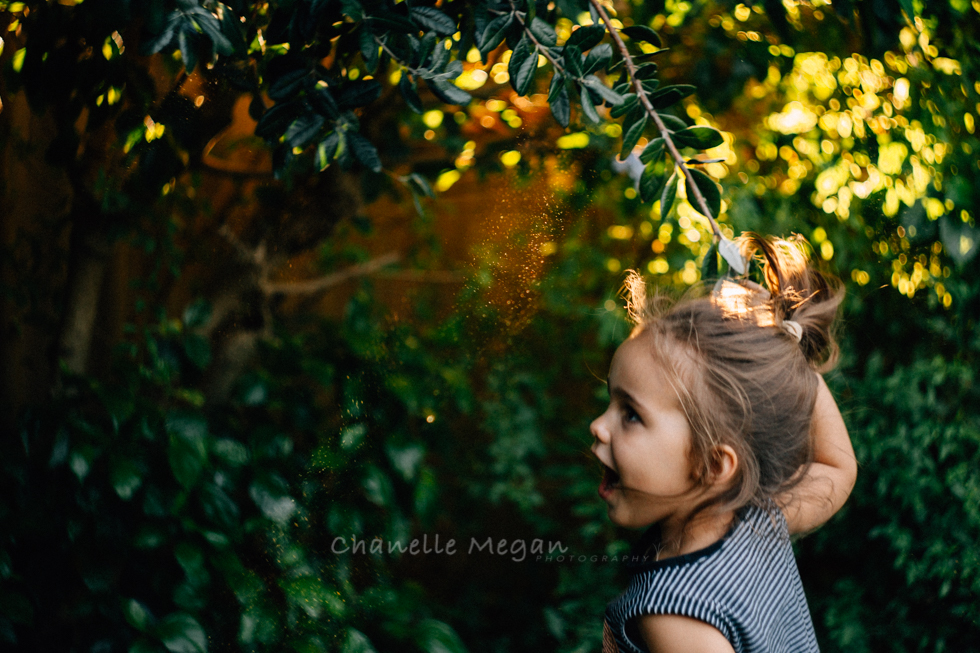 girl finds magic in the trees