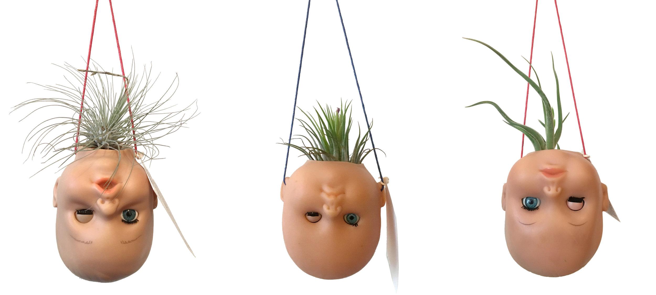 Pots suspendus Têtes de bébé & plantes d'air