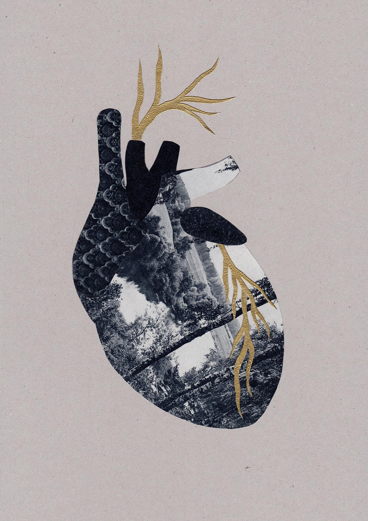 Mon Cœur